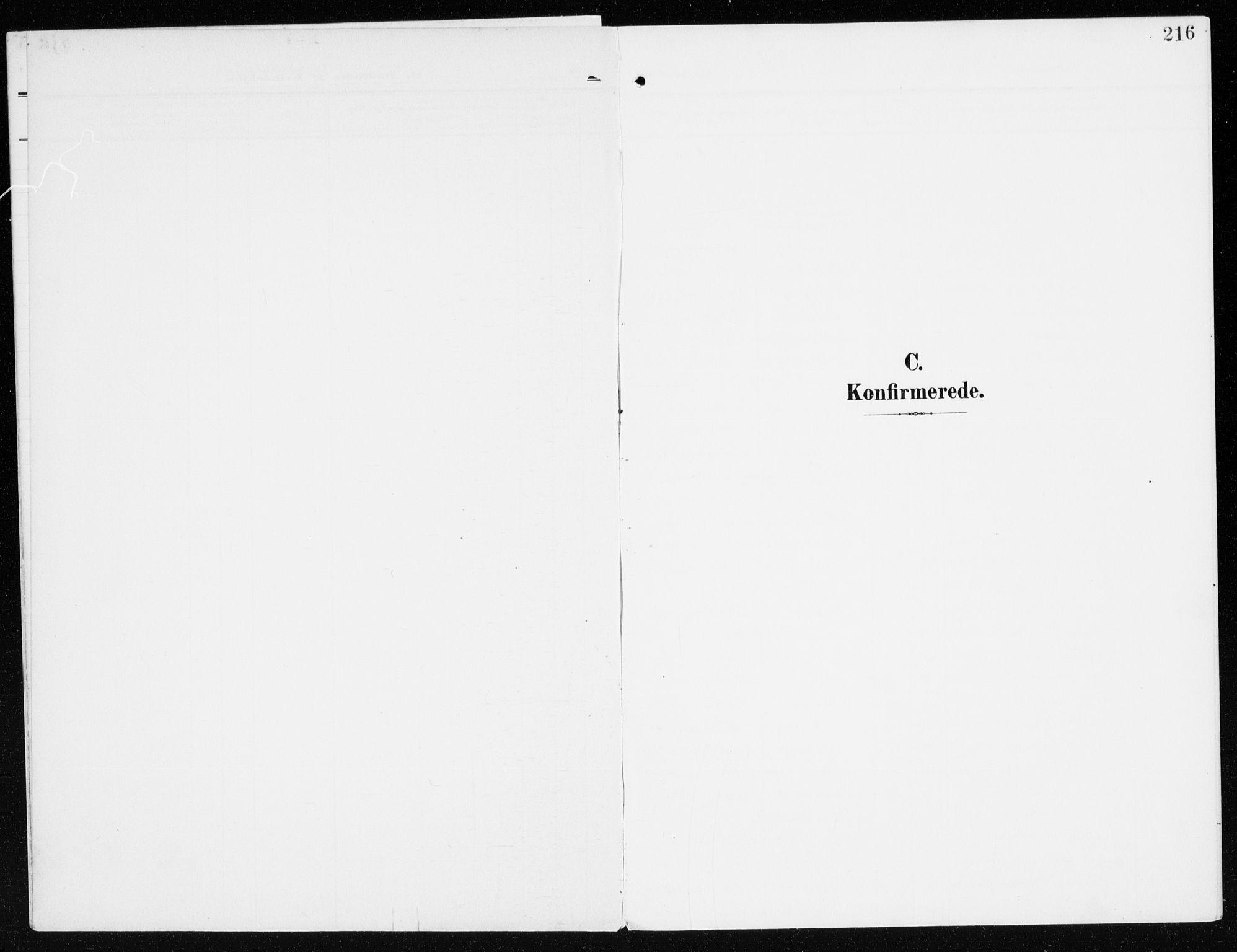 SAH, Furnes sokneprestkontor, K/Ka/L0001: Ministerialbok nr. 1, 1907-1935, s. 216