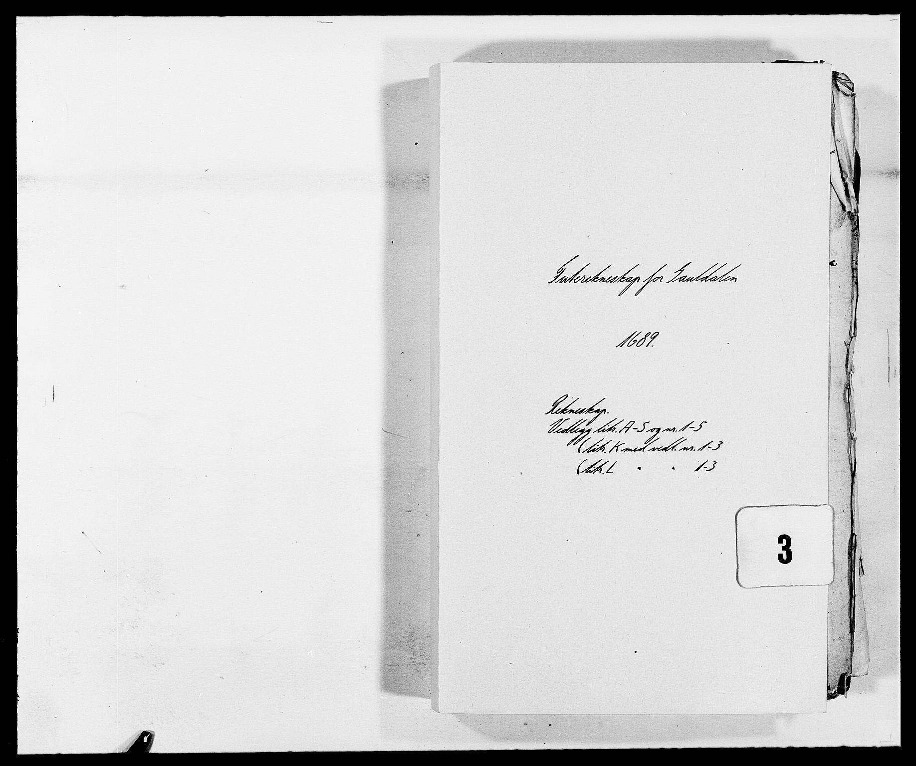 RA, Rentekammeret inntil 1814, Reviderte regnskaper, Fogderegnskap, R59/L3940: Fogderegnskap Gauldal, 1689-1690, s. 1