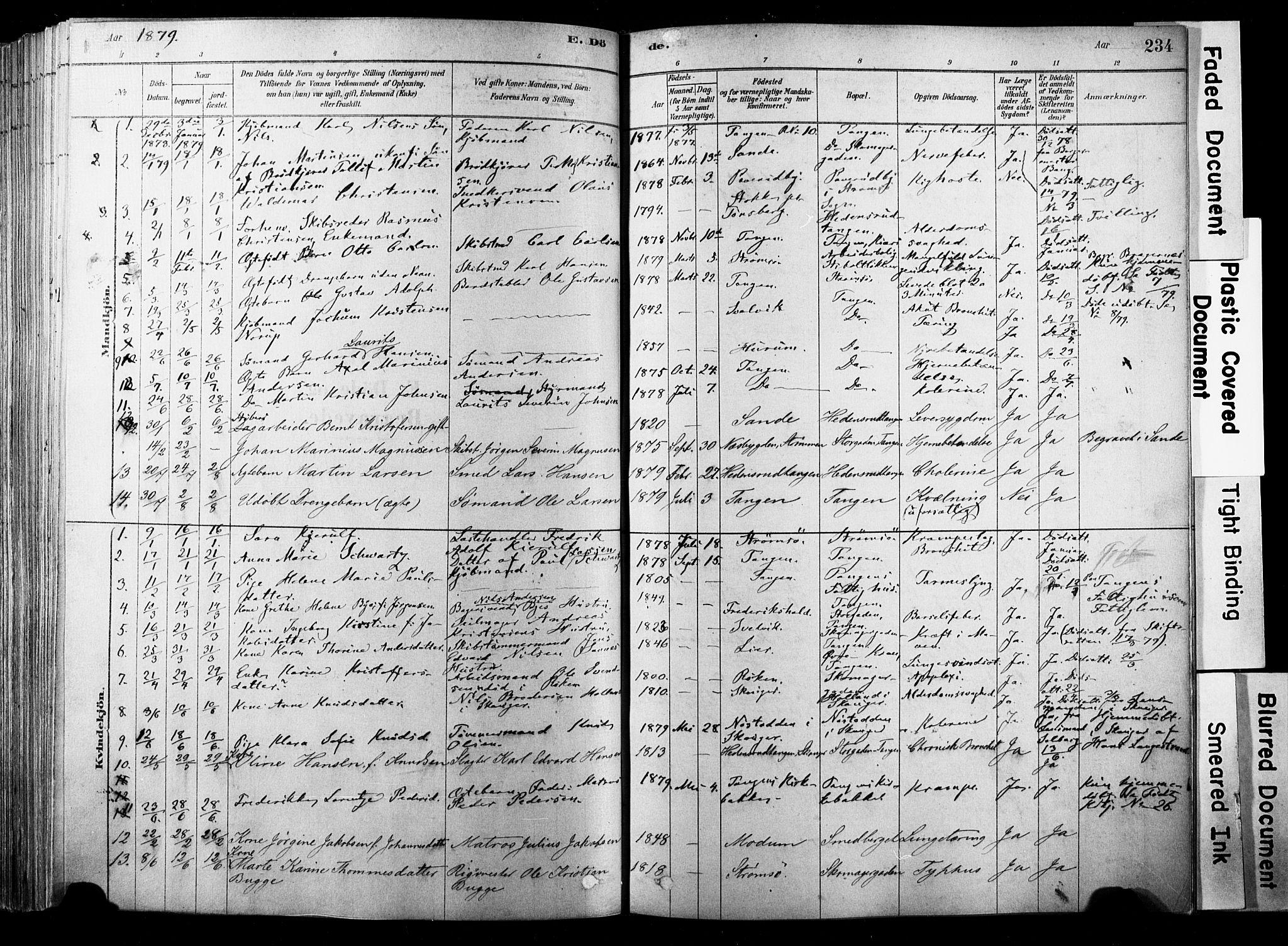 SAKO, Strømsø kirkebøker, F/Fb/L0006: Ministerialbok nr. II 6, 1879-1910, s. 234
