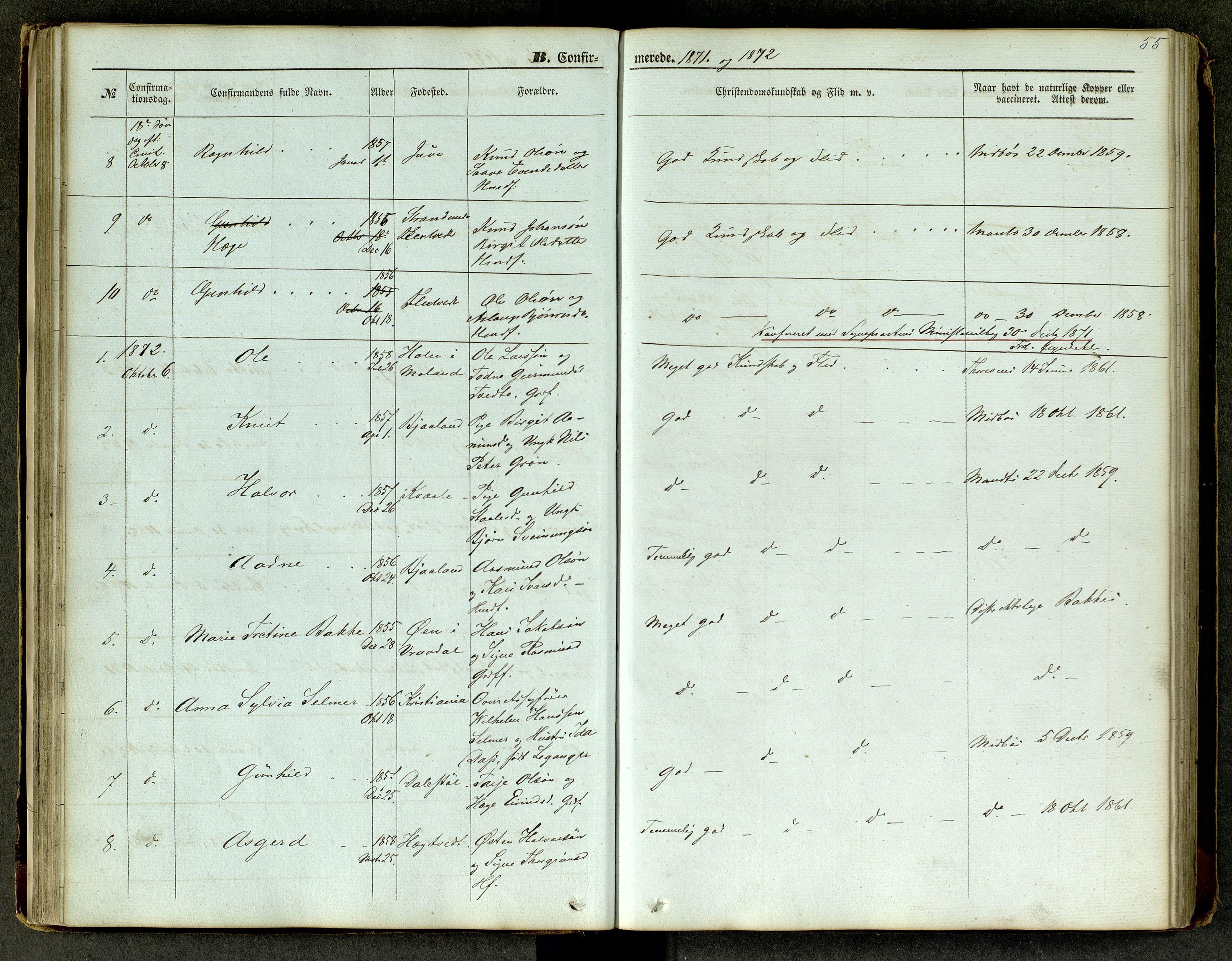 SAKO, Lårdal kirkebøker, G/Ga/L0002: Klokkerbok nr. I 2, 1861-1890, s. 55