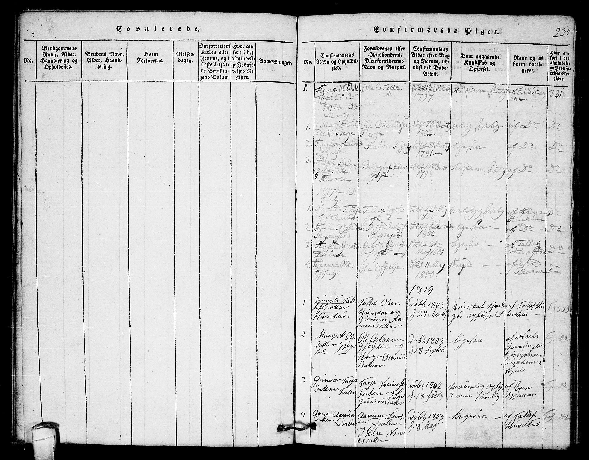SAKO, Lårdal kirkebøker, G/Gb/L0001: Klokkerbok nr. II 1, 1815-1865, s. 234