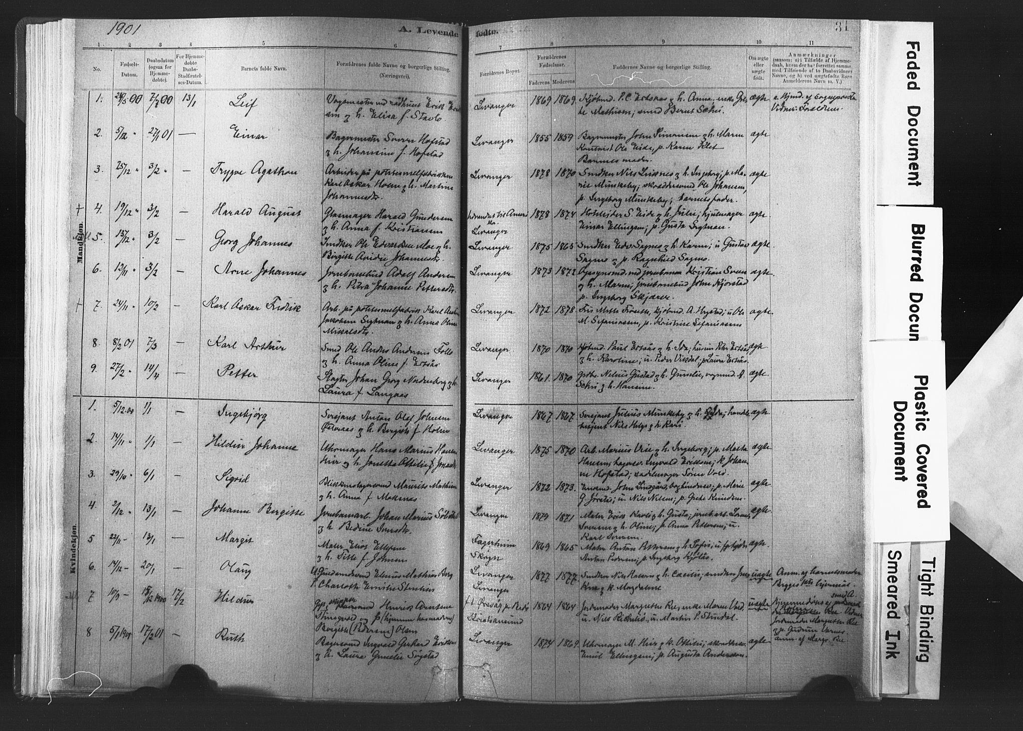 SAT, Ministerialprotokoller, klokkerbøker og fødselsregistre - Nord-Trøndelag, 720/L0189: Ministerialbok nr. 720A05, 1880-1911, s. 31