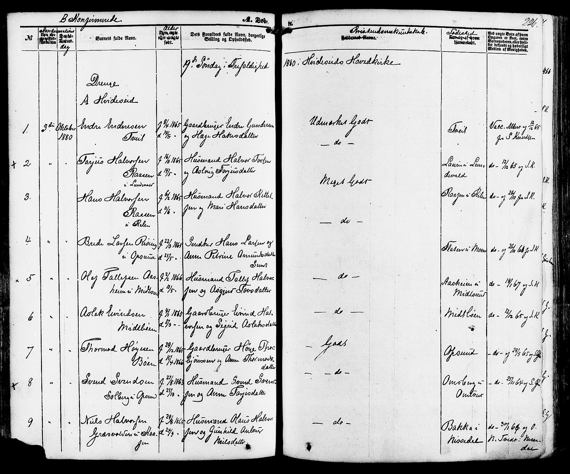 SAKO, Kviteseid kirkebøker, F/Fa/L0007: Ministerialbok nr. I 7, 1859-1881, s. 226