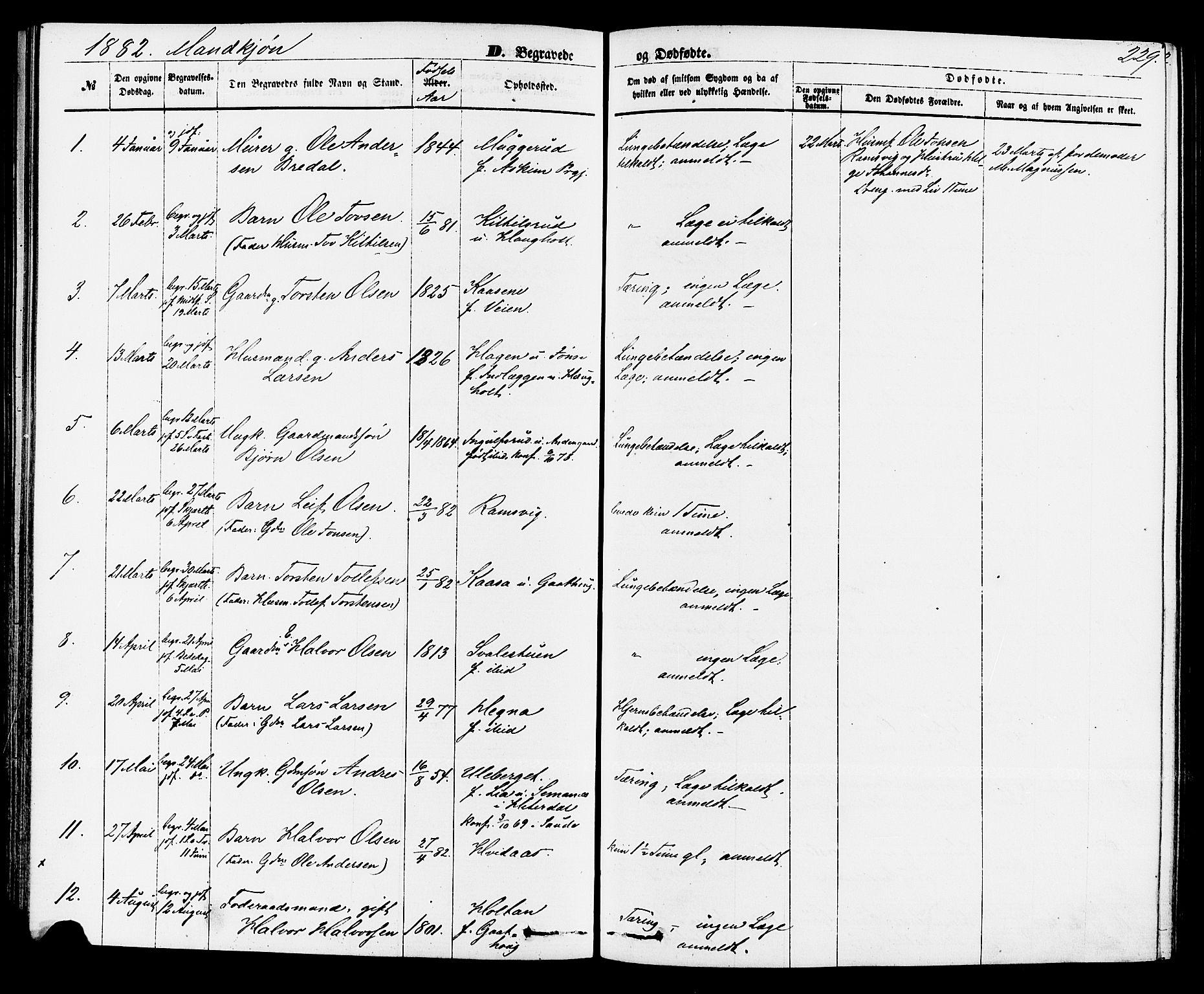 SAKO, Sauherad kirkebøker, F/Fa/L0008: Ministerialbok nr. I 8, 1873-1886, s. 229