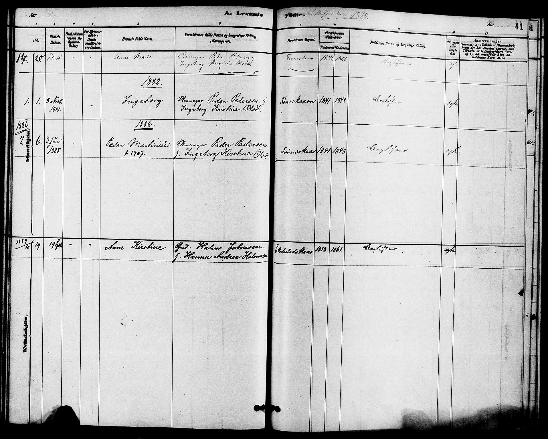 SAKO, Solum kirkebøker, F/Fc/L0001: Ministerialbok nr. III 1, 1877-1891, s. 41
