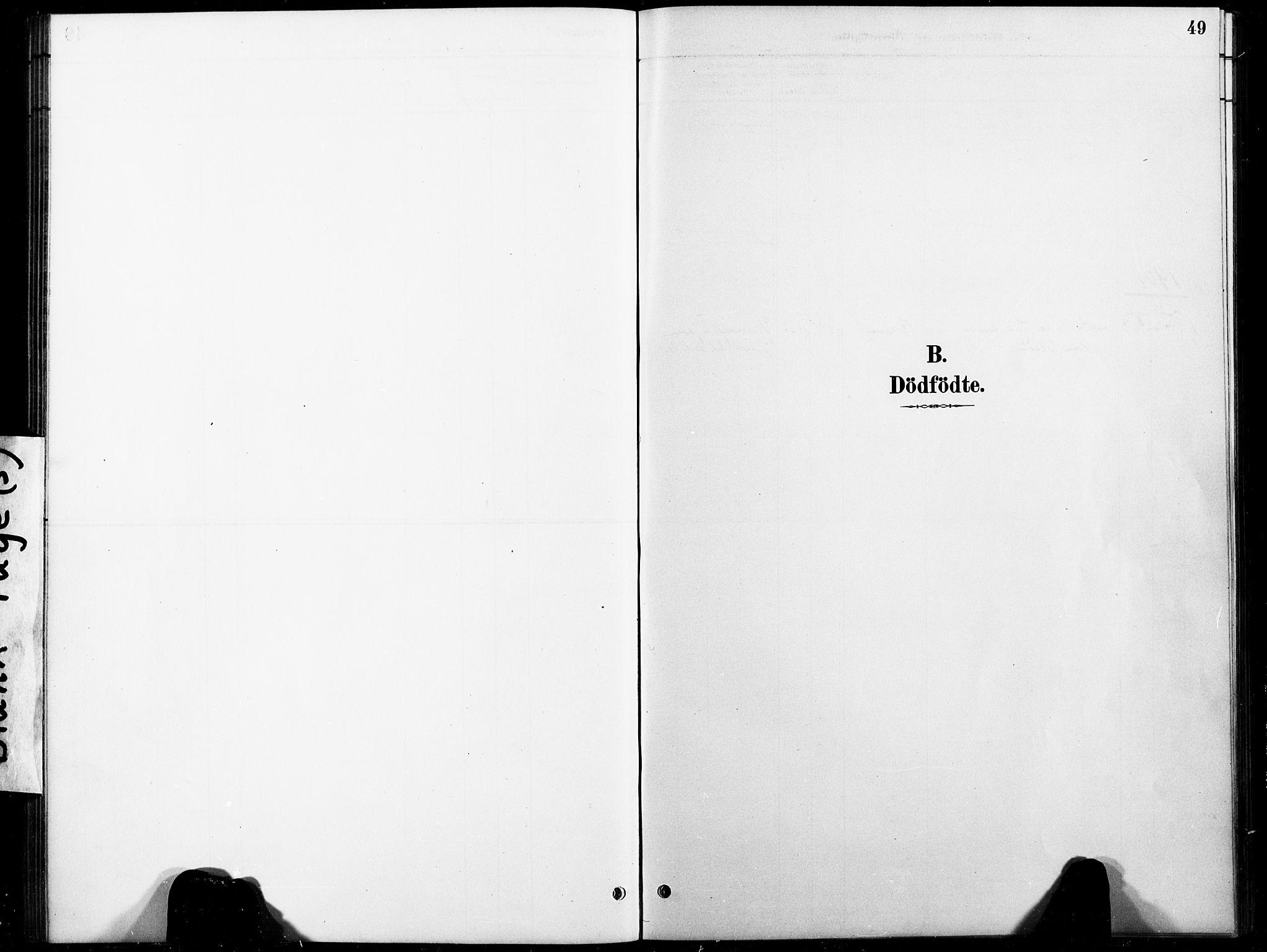 SAT, Ministerialprotokoller, klokkerbøker og fødselsregistre - Nord-Trøndelag, 738/L0364: Ministerialbok nr. 738A01, 1884-1902, s. 49