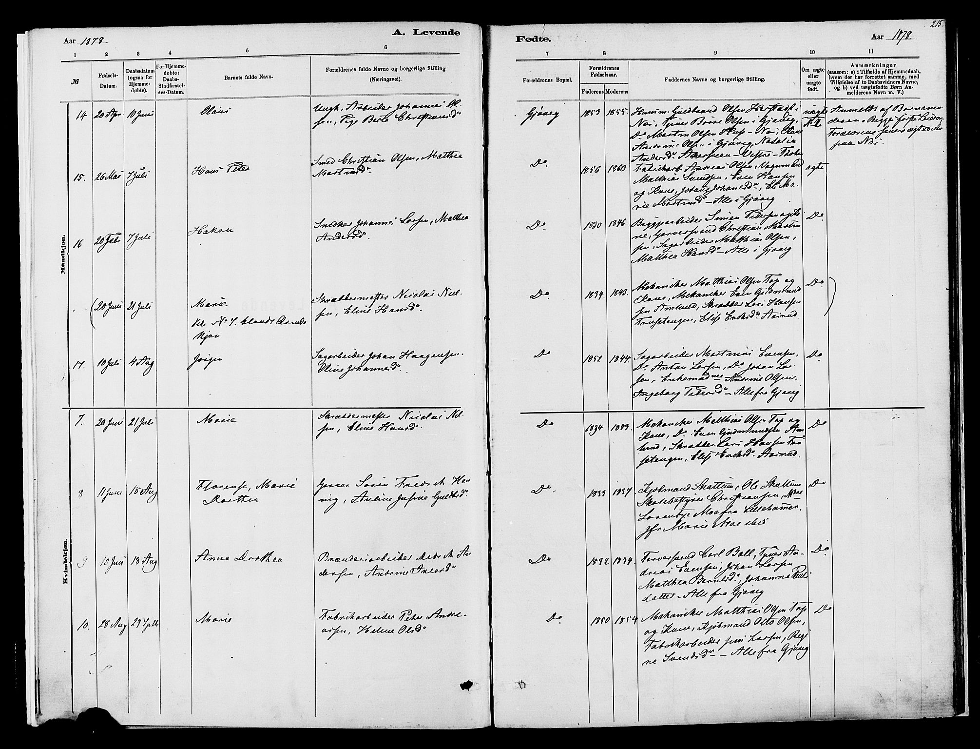 SAH, Vardal prestekontor, H/Ha/Haa/L0008: Ministerialbok nr. 8, 1878-1890, s. 215