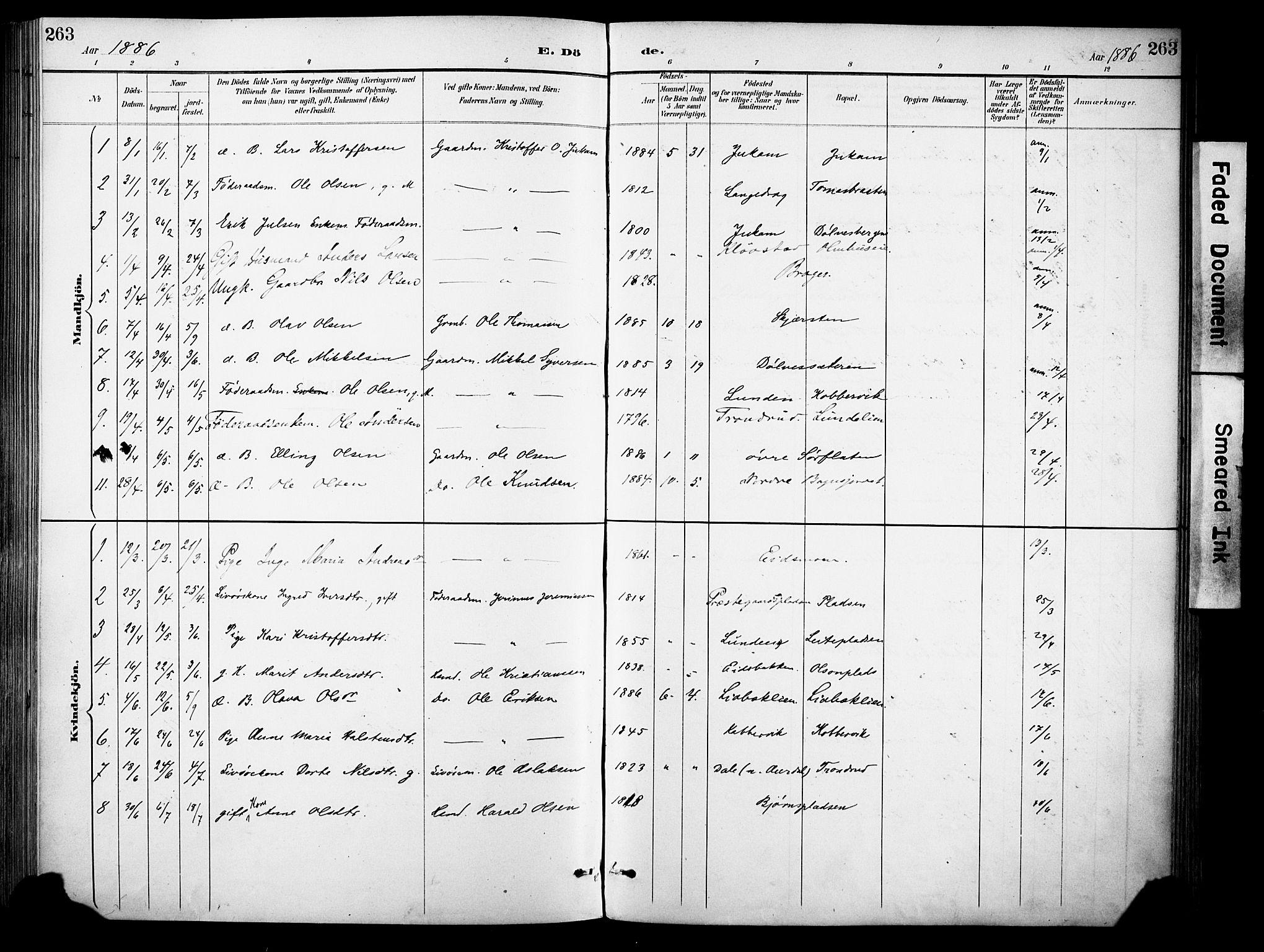 SAH, Sør-Aurdal prestekontor, Ministerialbok nr. 9, 1886-1906, s. 263