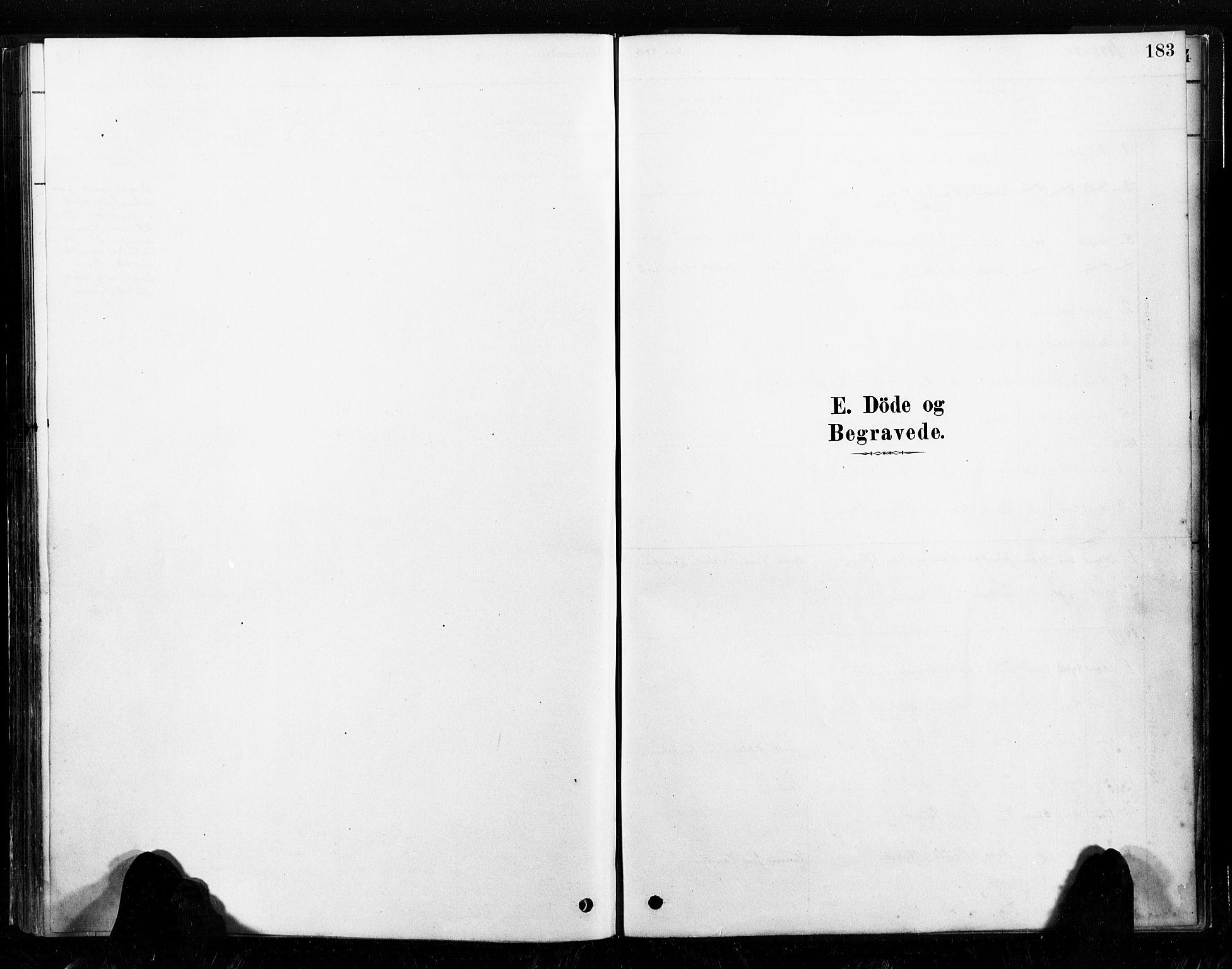 SAT, Ministerialprotokoller, klokkerbøker og fødselsregistre - Nord-Trøndelag, 789/L0705: Ministerialbok nr. 789A01, 1878-1910, s. 183