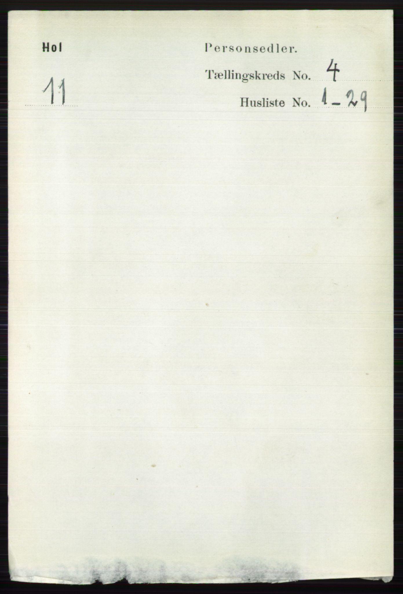 RA, Folketelling 1891 for 0620 Hol herred, 1891, s. 1256