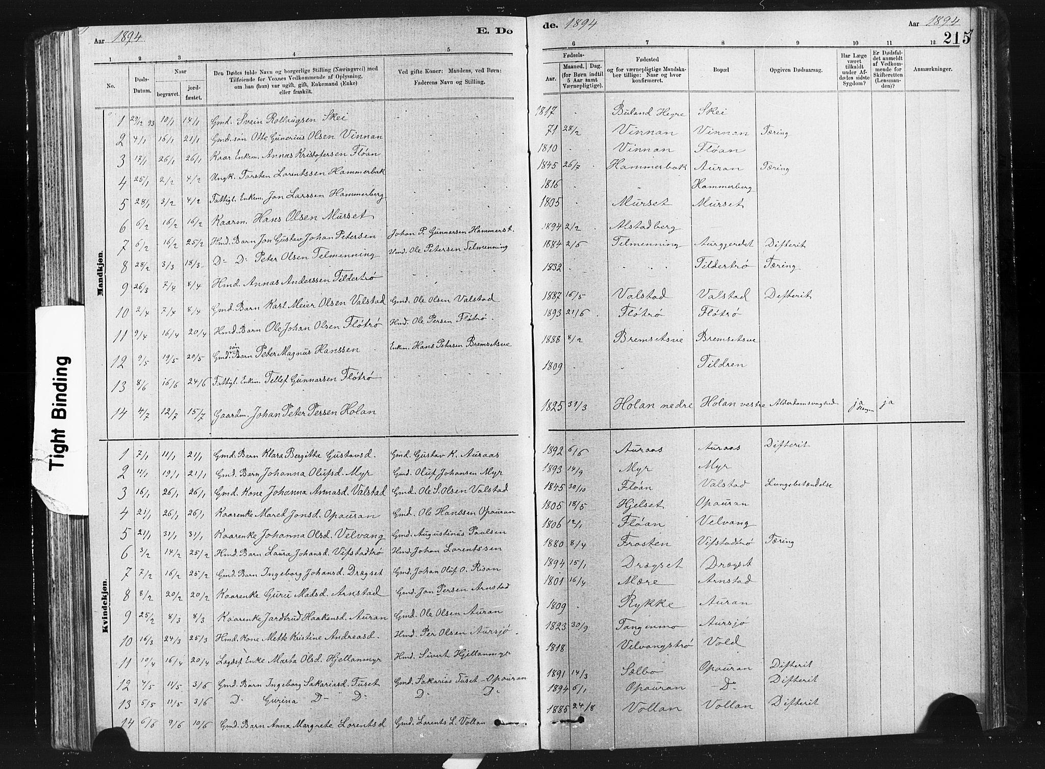 SAT, Ministerialprotokoller, klokkerbøker og fødselsregistre - Nord-Trøndelag, 712/L0103: Klokkerbok nr. 712C01, 1878-1917, s. 215