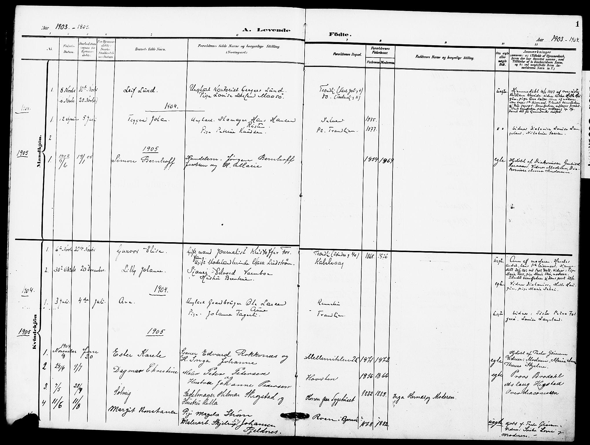 SAT, Ministerialprotokoller, klokkerbøker og fødselsregistre - Sør-Trøndelag, 628/L0483: Ministerialbok nr. 628A01, 1902-1920, s. 1