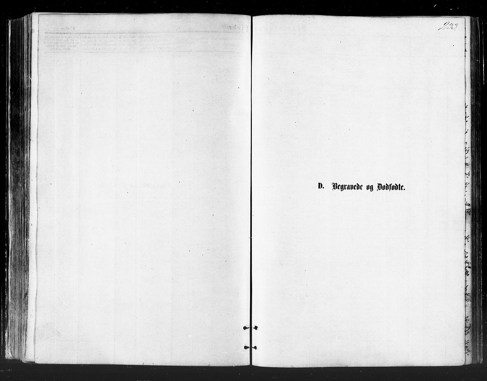 SATØ, Vadsø soknepreskontor, H/Ha/L0005kirke: Ministerialbok nr. 5, 1873-1884, s. 233