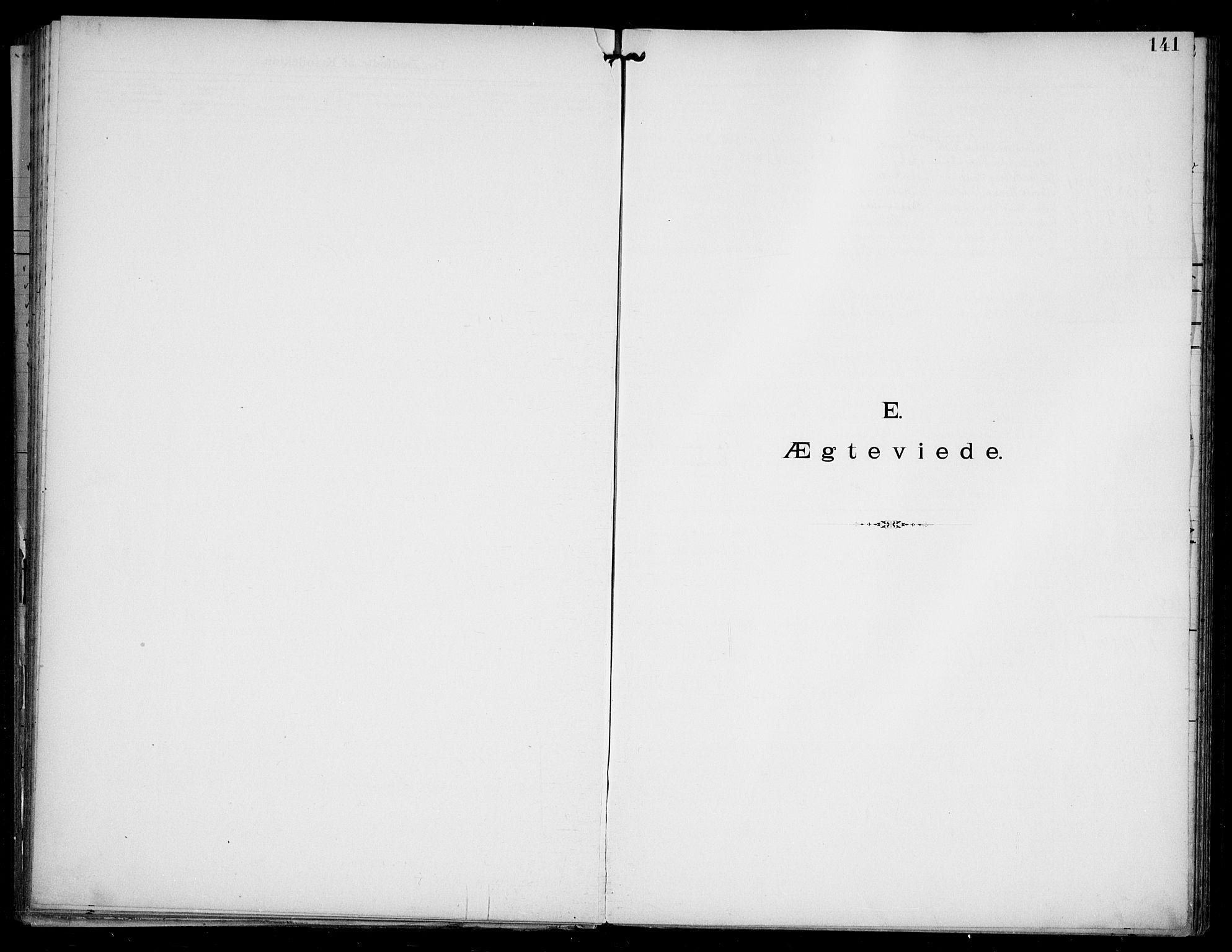SAO, Den katolsk apostoliske menighet i Oslo , F/Fa/L0002: Dissenterprotokoll nr. 2, 1892-1937, s. 141