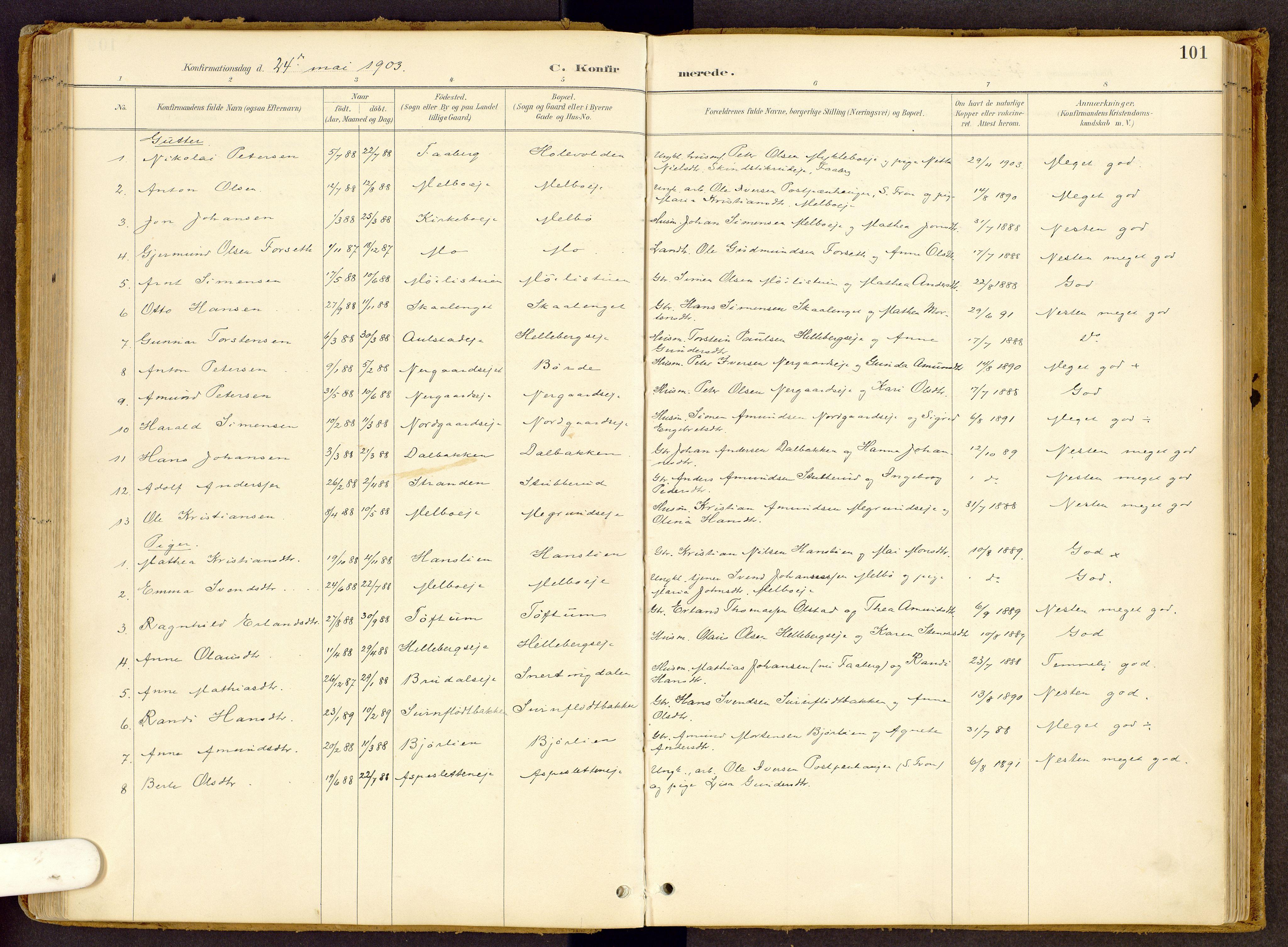 SAH, Vestre Gausdal prestekontor, Ministerialbok nr. 2, 1887-1918, s. 101