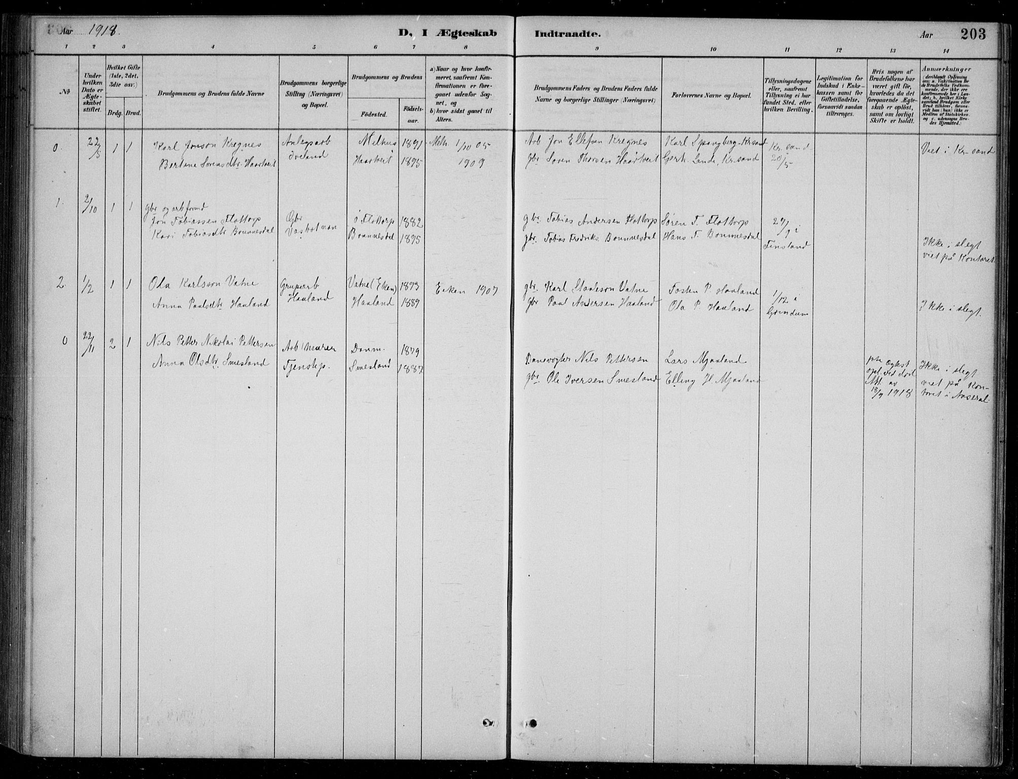 SAK, Bjelland sokneprestkontor, F/Fb/Fbc/L0003: Klokkerbok nr. B 3, 1887-1924, s. 203