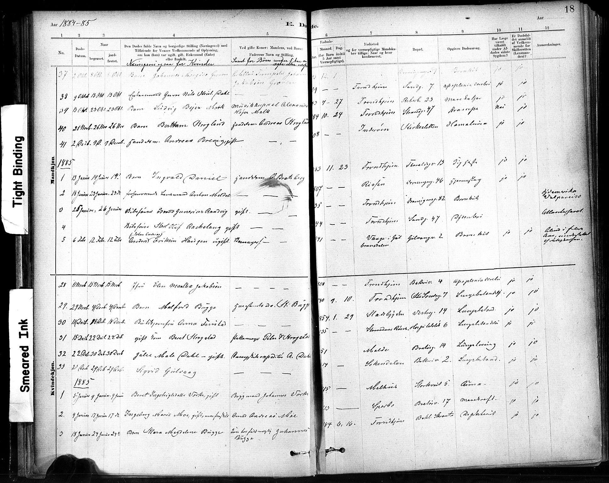 SAT, Ministerialprotokoller, klokkerbøker og fødselsregistre - Sør-Trøndelag, 602/L0120: Ministerialbok nr. 602A18, 1880-1913, s. 18