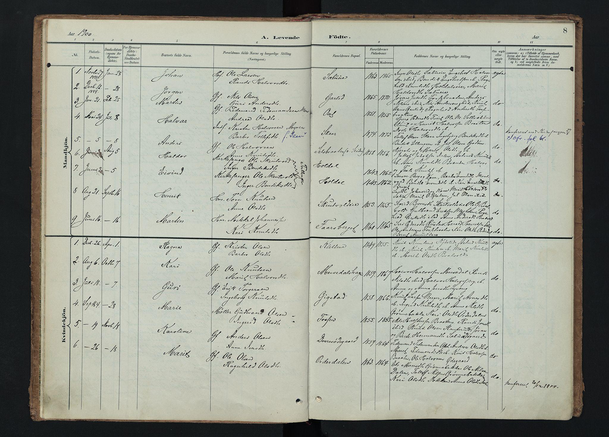 SAH, Nord-Aurdal prestekontor, Ministerialbok nr. 15, 1896-1914, s. 8