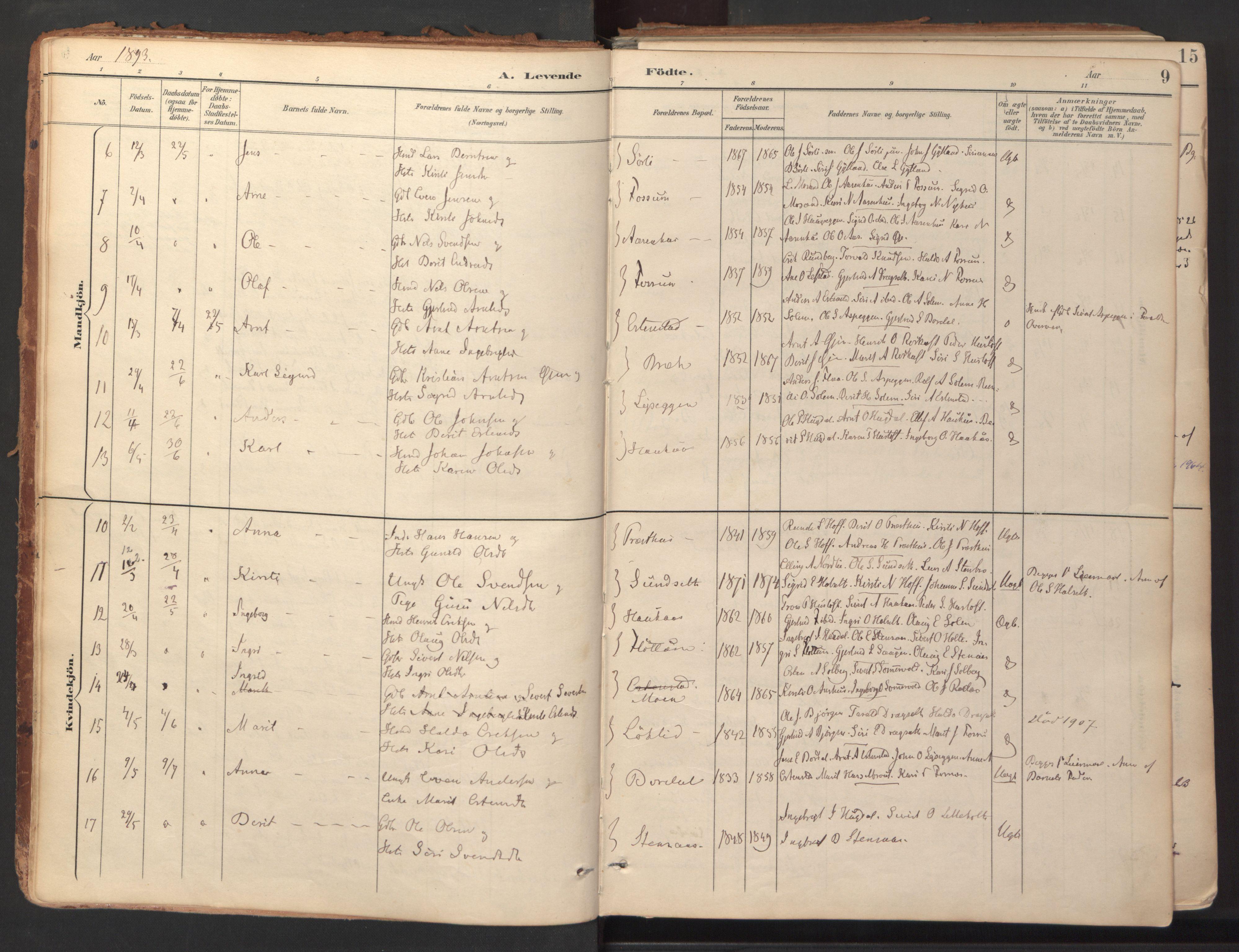 SAT, Ministerialprotokoller, klokkerbøker og fødselsregistre - Sør-Trøndelag, 689/L1041: Ministerialbok nr. 689A06, 1891-1923, s. 9