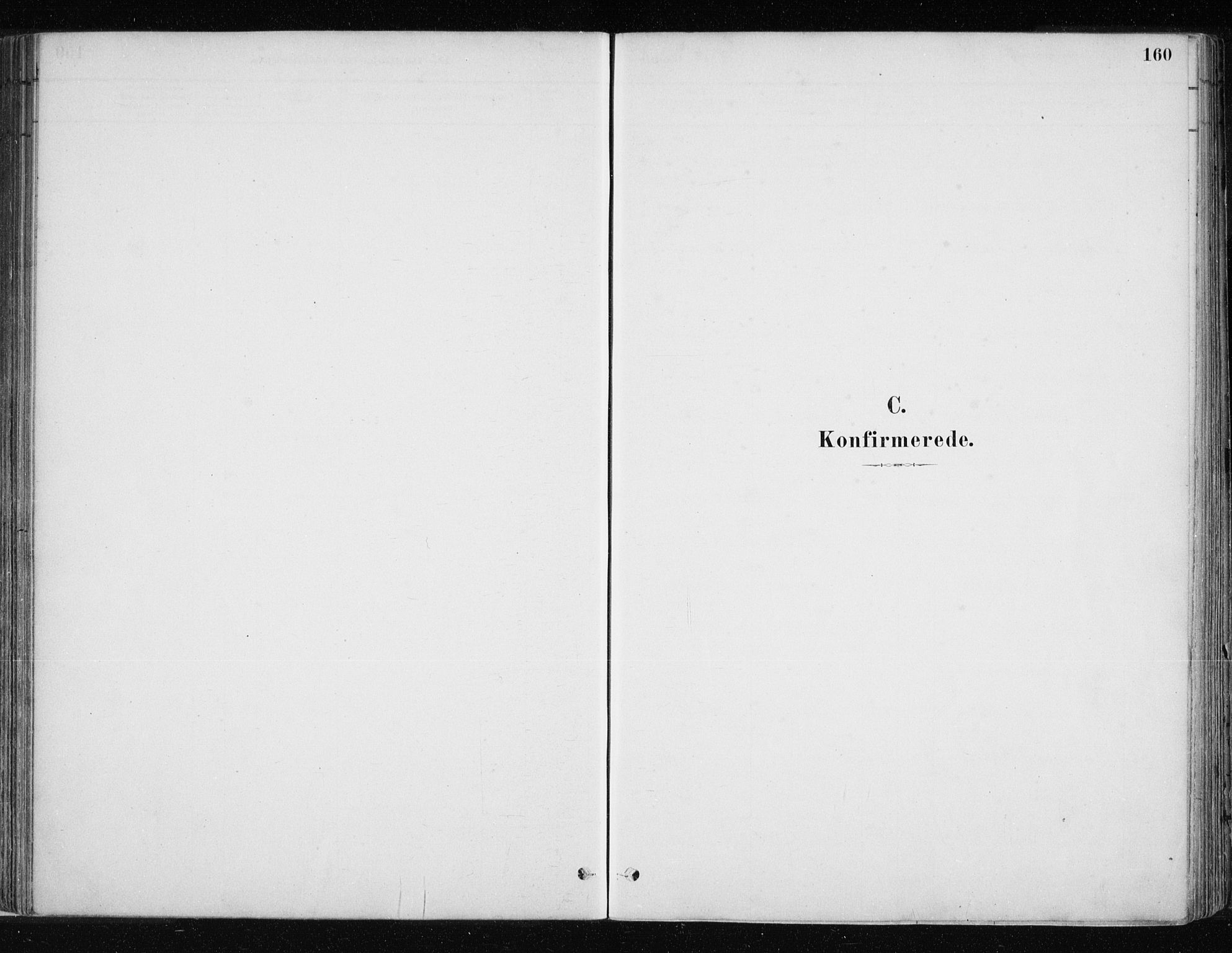 SATØ, Lyngen sokneprestembete, H/He/Hea/L0007kirke: Ministerialbok nr. 7, 1879-1890, s. 160