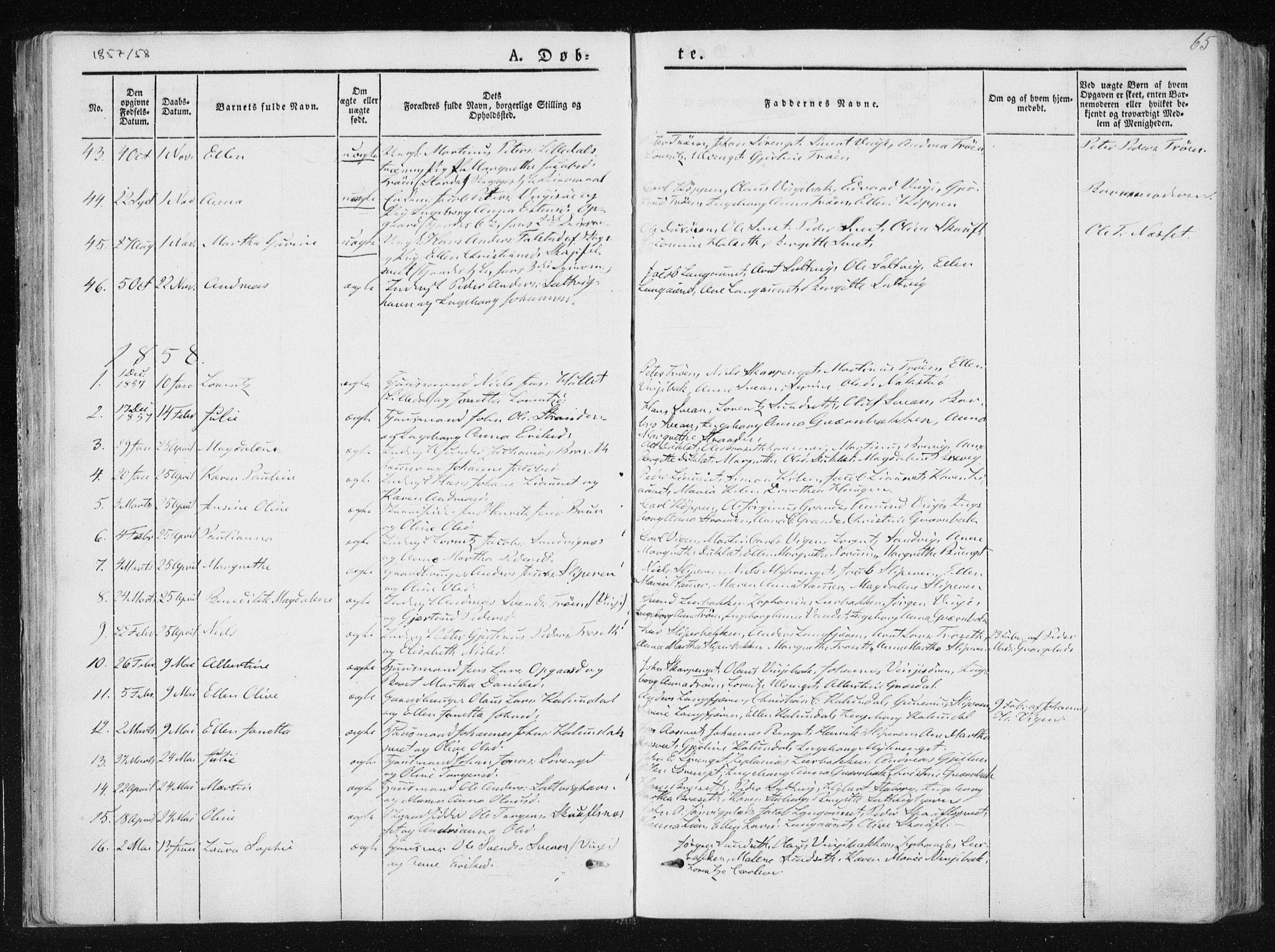 SAT, Ministerialprotokoller, klokkerbøker og fødselsregistre - Nord-Trøndelag, 733/L0323: Ministerialbok nr. 733A02, 1843-1870, s. 65
