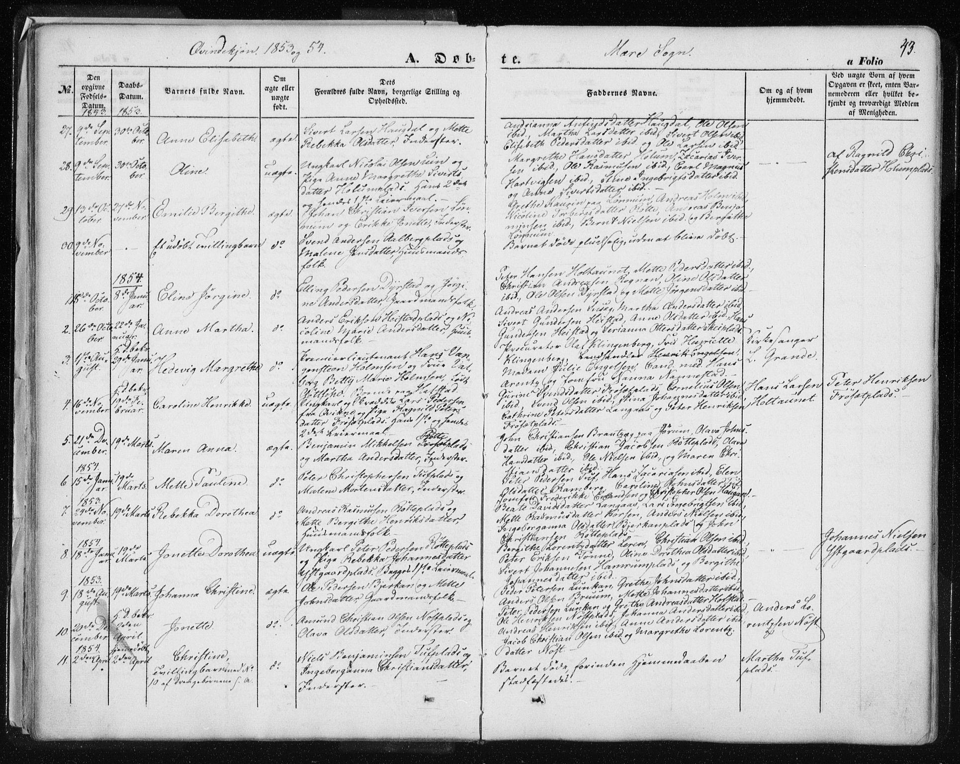 SAT, Ministerialprotokoller, klokkerbøker og fødselsregistre - Nord-Trøndelag, 735/L0342: Ministerialbok nr. 735A07 /1, 1849-1862, s. 43
