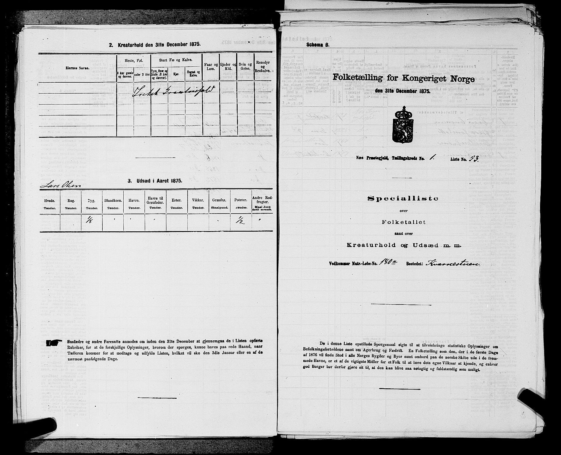 SAKO, Folketelling 1875 for 0616P Nes prestegjeld, 1875, s. 111