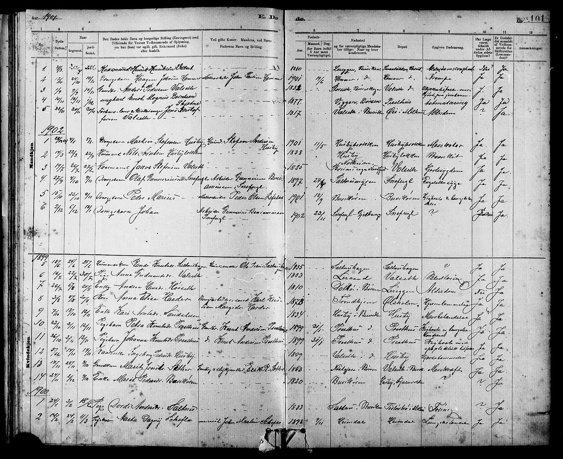 SAT, Ministerialprotokoller, klokkerbøker og fødselsregistre - Sør-Trøndelag, 666/L0790: Klokkerbok nr. 666C03, 1885-1908, s. 101
