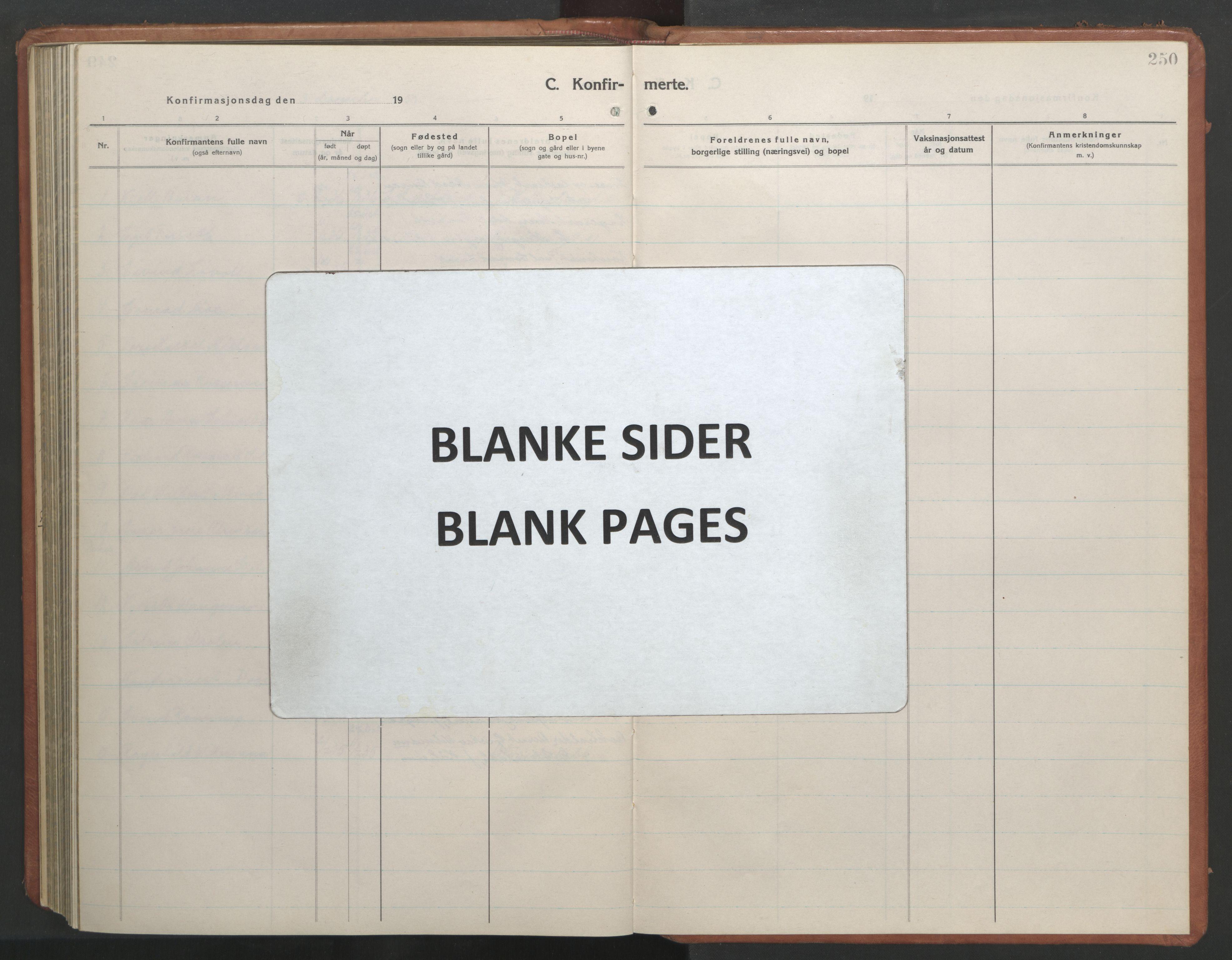 SAT, Ministerialprotokoller, klokkerbøker og fødselsregistre - Sør-Trøndelag, 604/L0228: Klokkerbok nr. 604C11, 1928-1950, s. 250