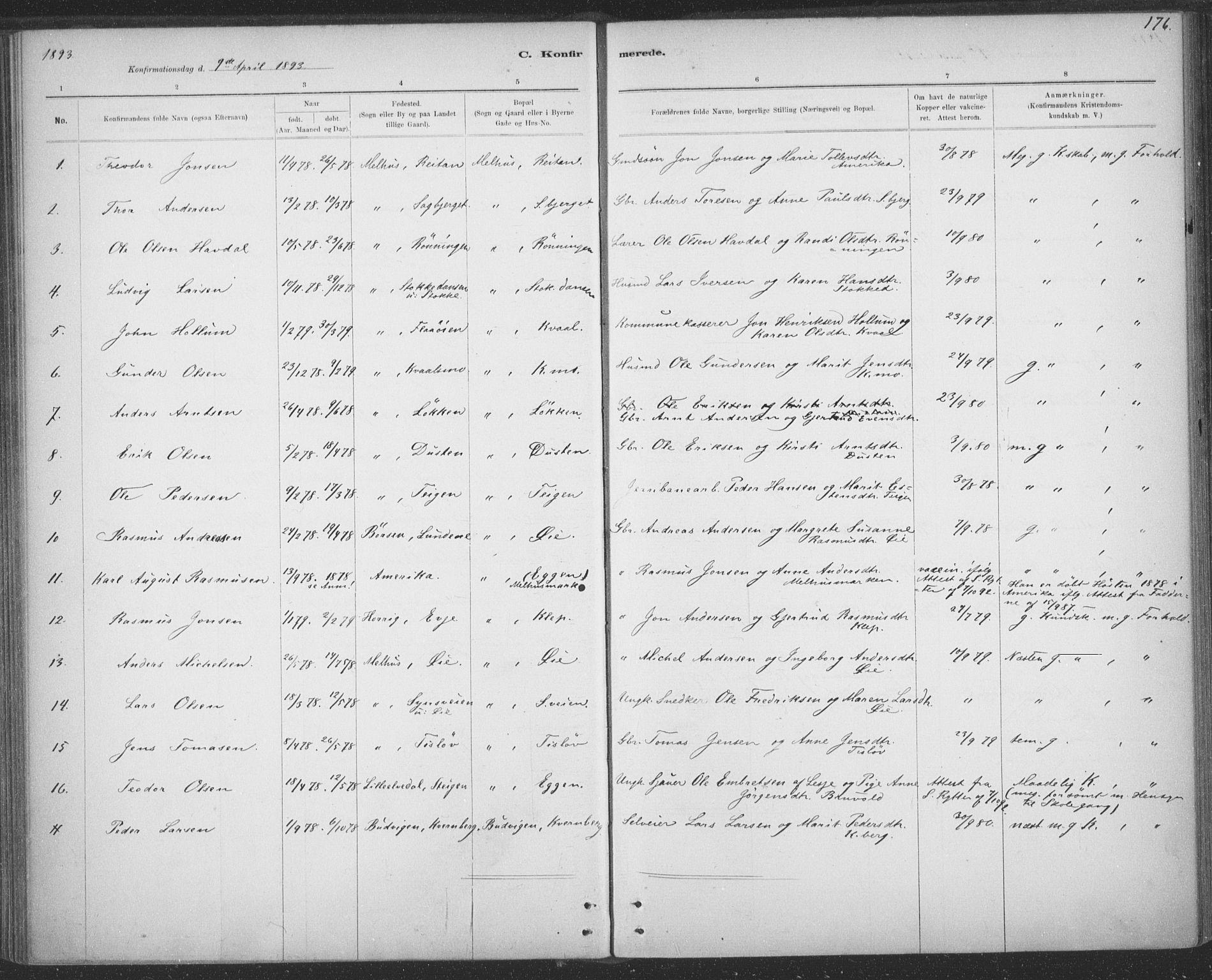 SAT, Ministerialprotokoller, klokkerbøker og fødselsregistre - Sør-Trøndelag, 691/L1085: Ministerialbok nr. 691A17, 1887-1908, s. 176