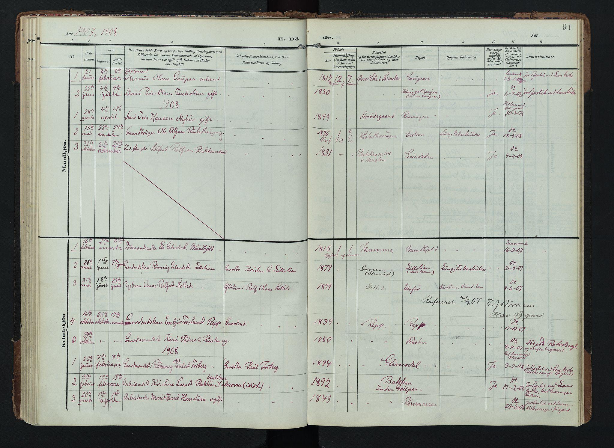 SAH, Lom prestekontor, K/L0012: Ministerialbok nr. 12, 1904-1928, s. 91