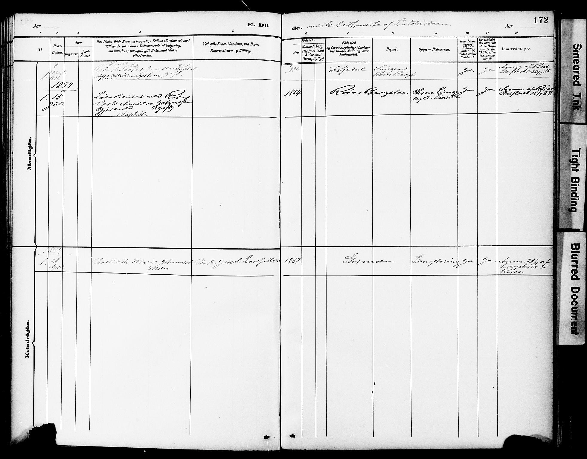 SAT, Ministerialprotokoller, klokkerbøker og fødselsregistre - Sør-Trøndelag, 681/L0935: Ministerialbok nr. 681A13, 1890-1898, s. 172