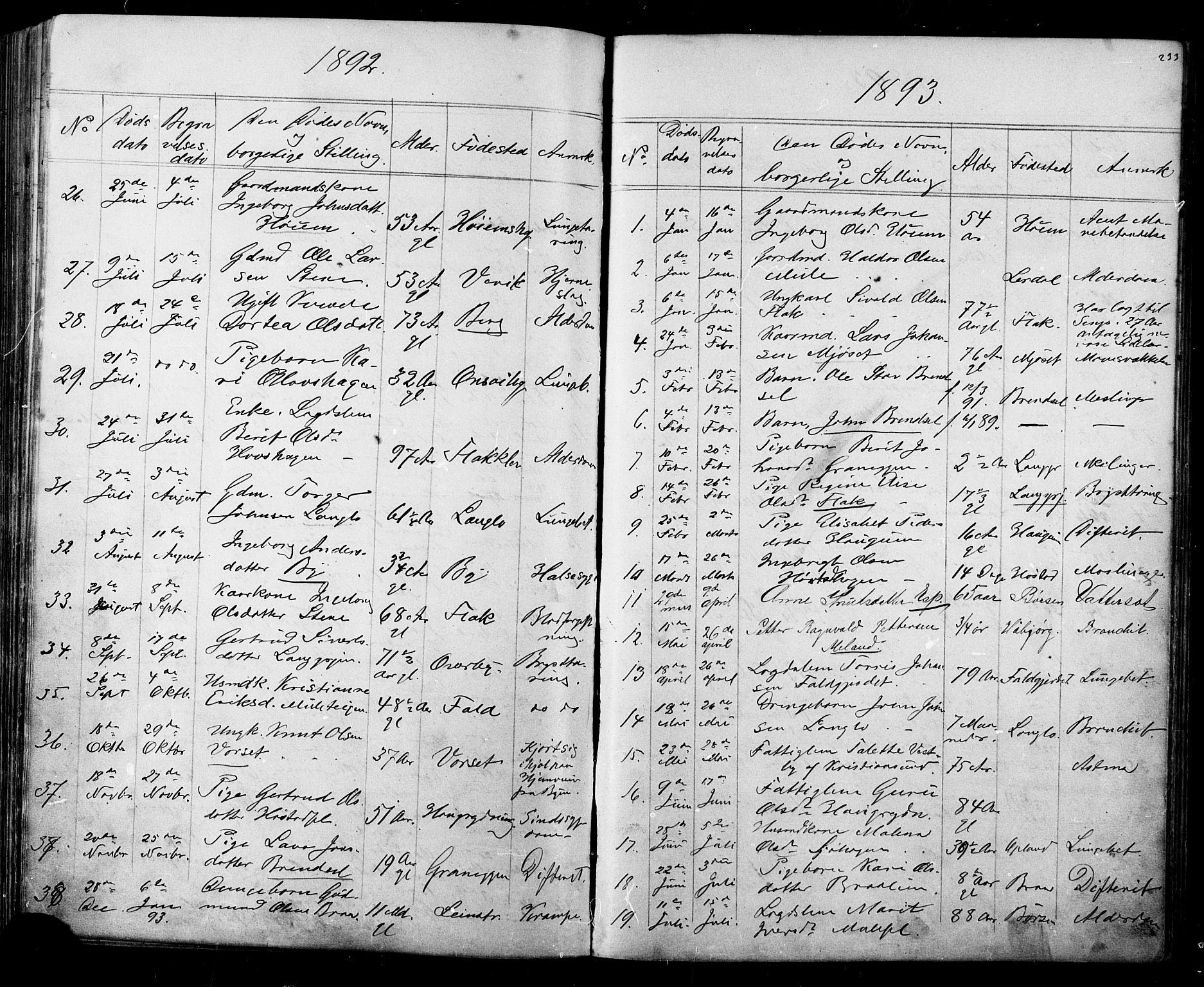SAT, Ministerialprotokoller, klokkerbøker og fødselsregistre - Sør-Trøndelag, 612/L0387: Klokkerbok nr. 612C03, 1874-1908, s. 233