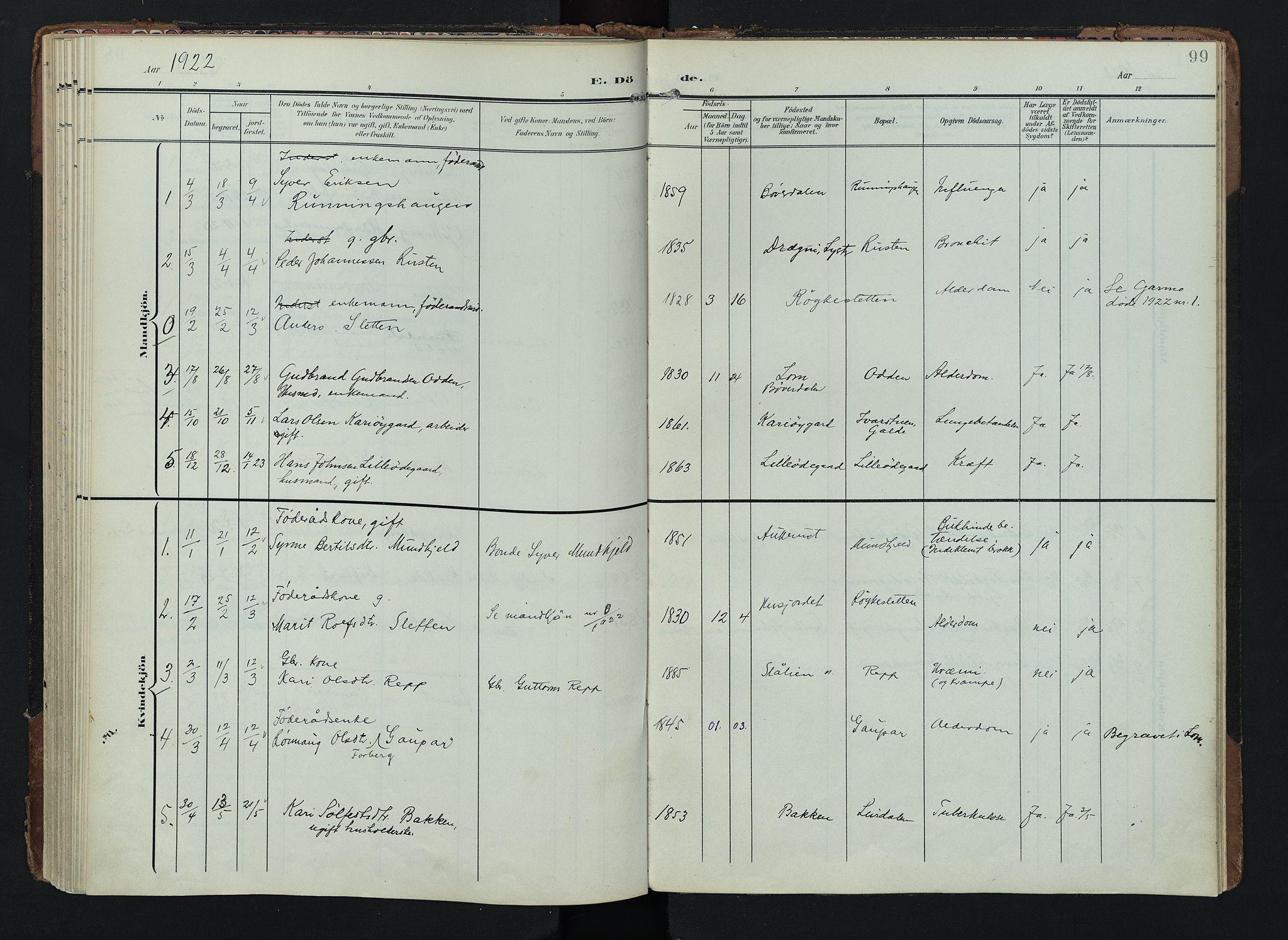 SAH, Lom prestekontor, K/L0012: Ministerialbok nr. 12, 1904-1928, s. 99