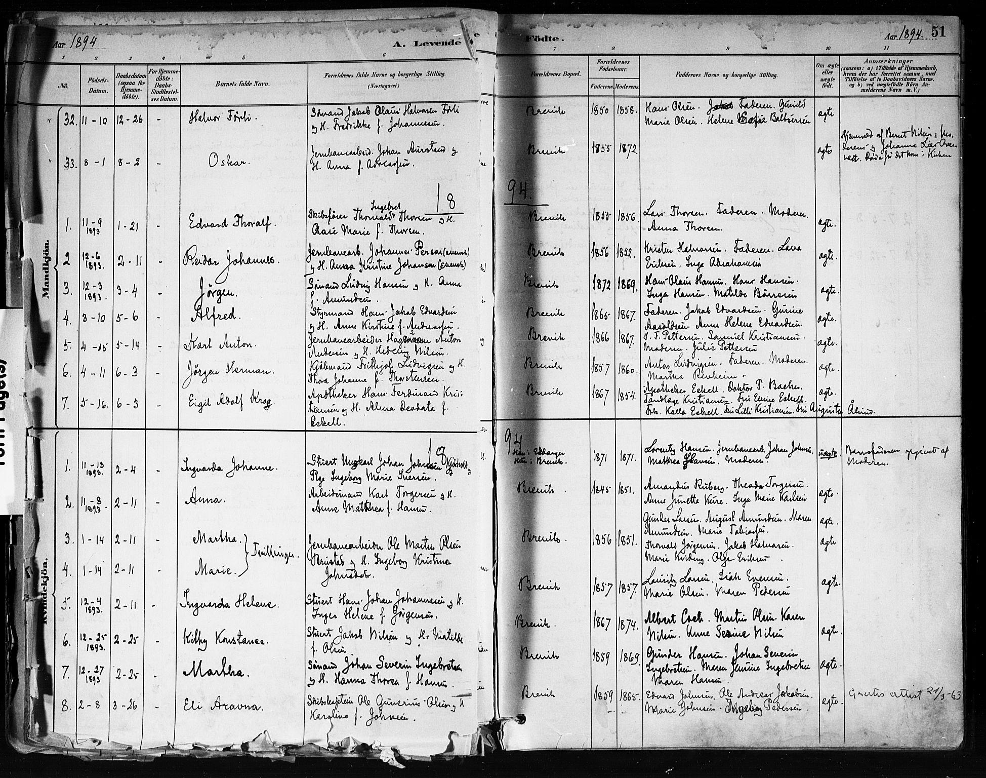 SAKO, Brevik kirkebøker, F/Fa/L0007: Ministerialbok nr. 7, 1882-1900, s. 51