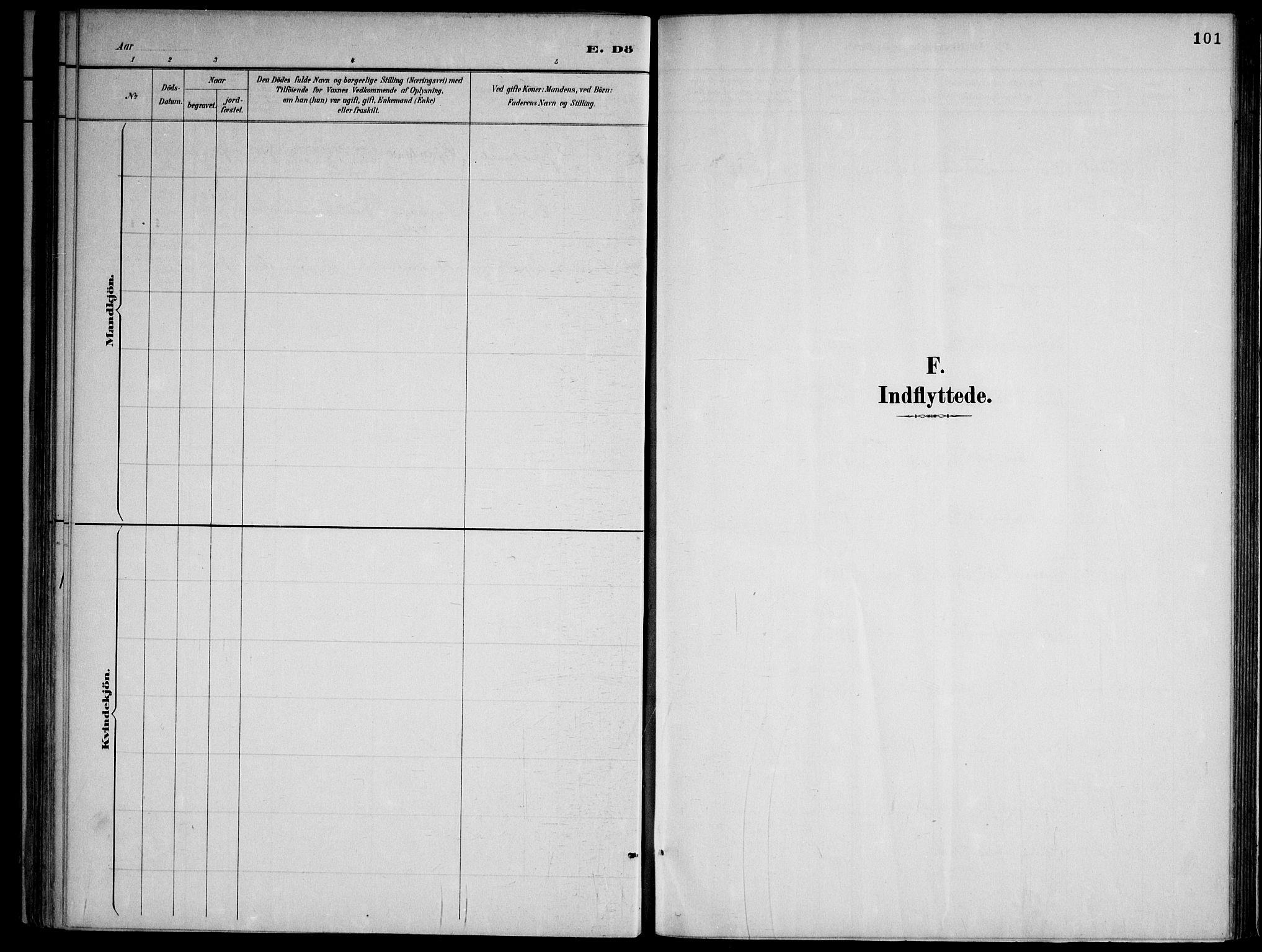 SAKO, Lårdal kirkebøker, F/Fa/L0007: Ministerialbok nr. I 7, 1887-1906, s. 101