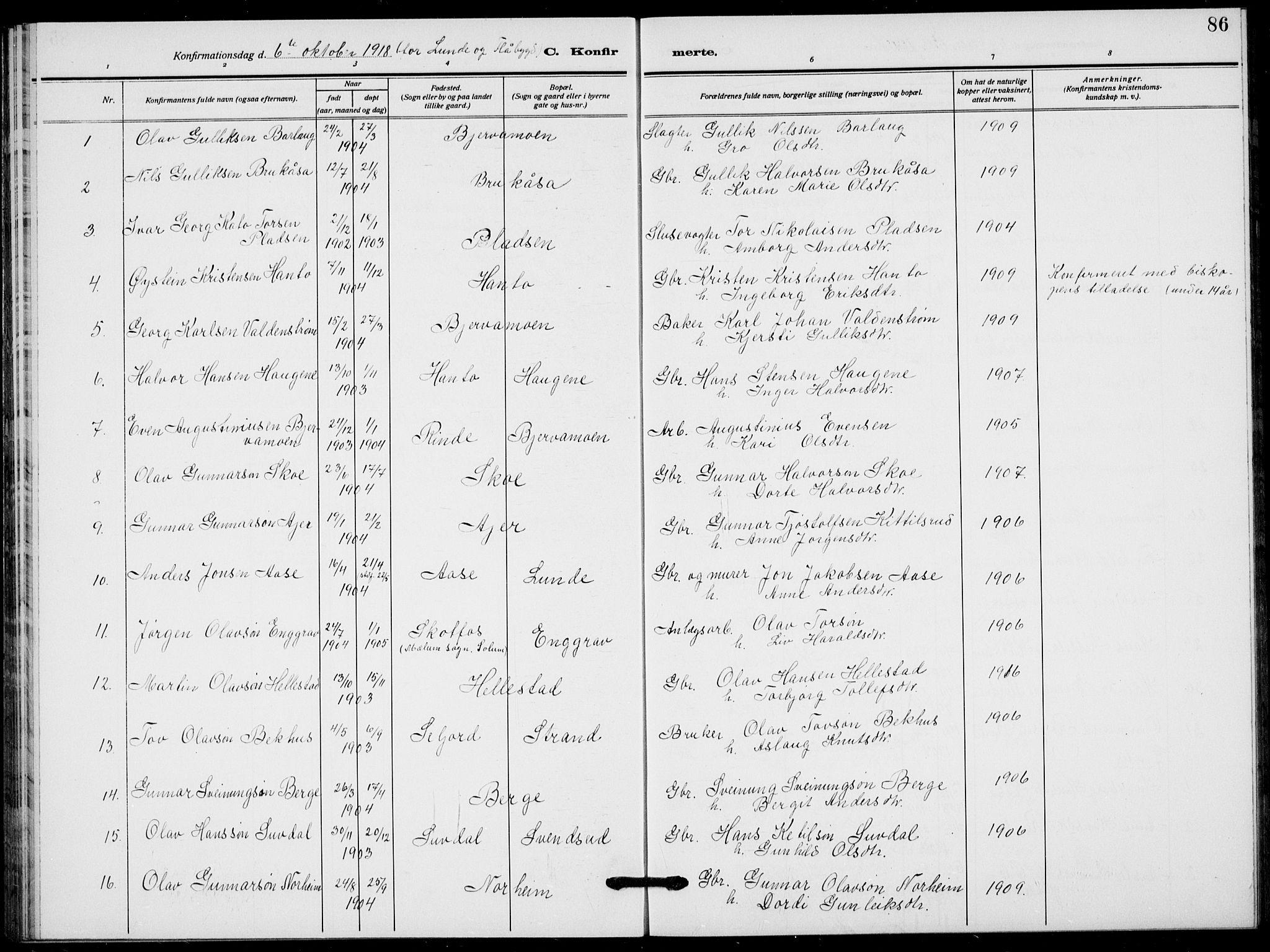 SAKO, Lunde kirkebøker, F/Fa/L0005: Ministerialbok nr. I 5, 1914-1922, s. 86