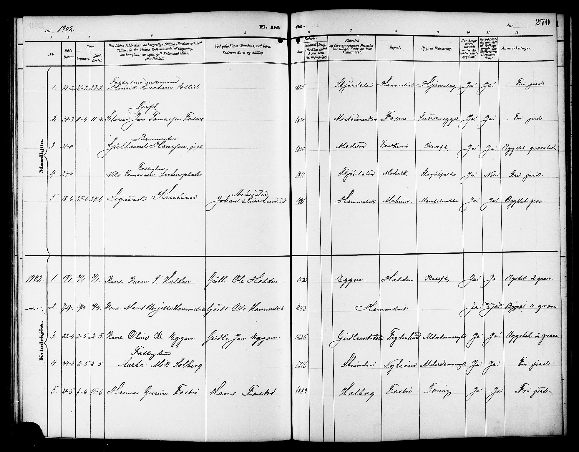 SAT, Ministerialprotokoller, klokkerbøker og fødselsregistre - Sør-Trøndelag, 617/L0431: Klokkerbok nr. 617C01, 1889-1910, s. 270