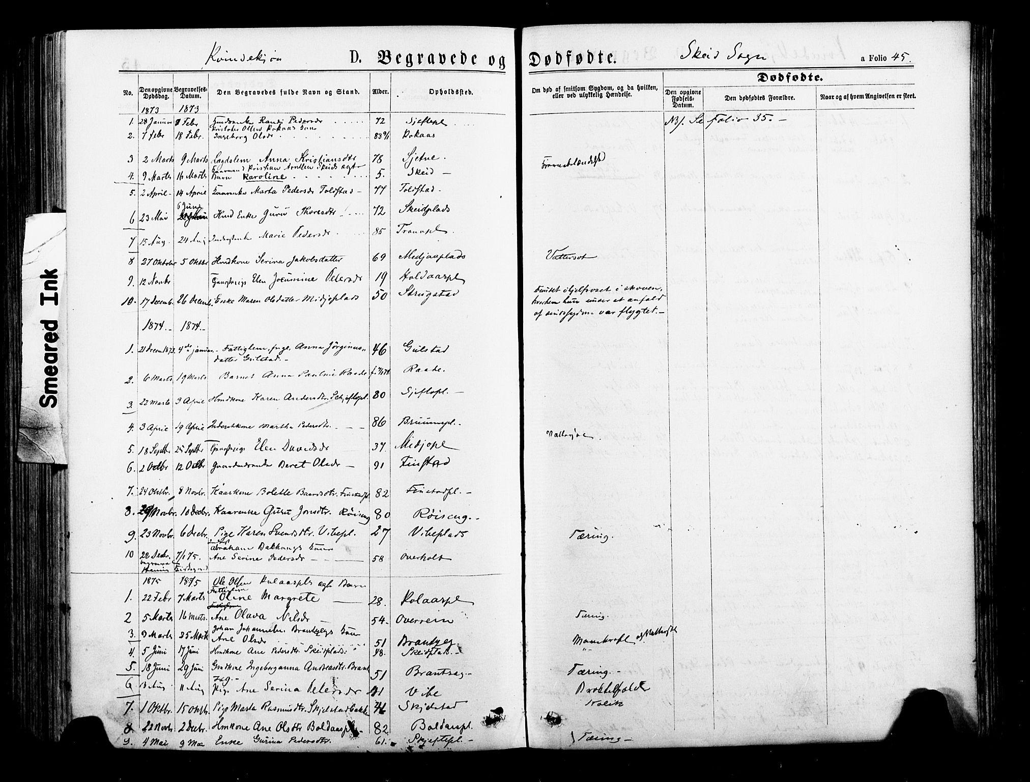 SAT, Ministerialprotokoller, klokkerbøker og fødselsregistre - Nord-Trøndelag, 735/L0348: Ministerialbok nr. 735A09 /2, 1873-1883, s. 45