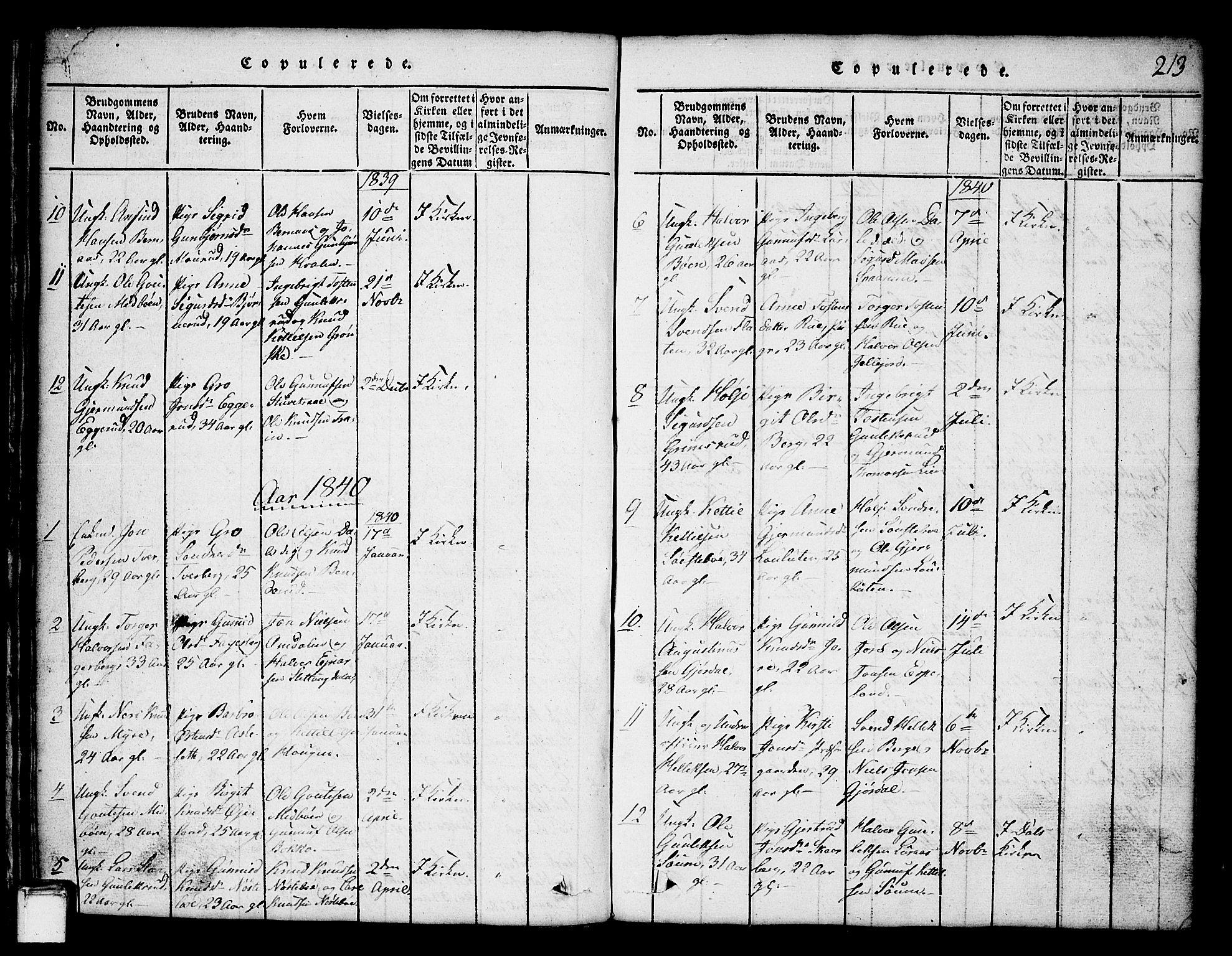 SAKO, Tinn kirkebøker, G/Ga/L0001: Klokkerbok nr. I 1, 1815-1850, s. 213