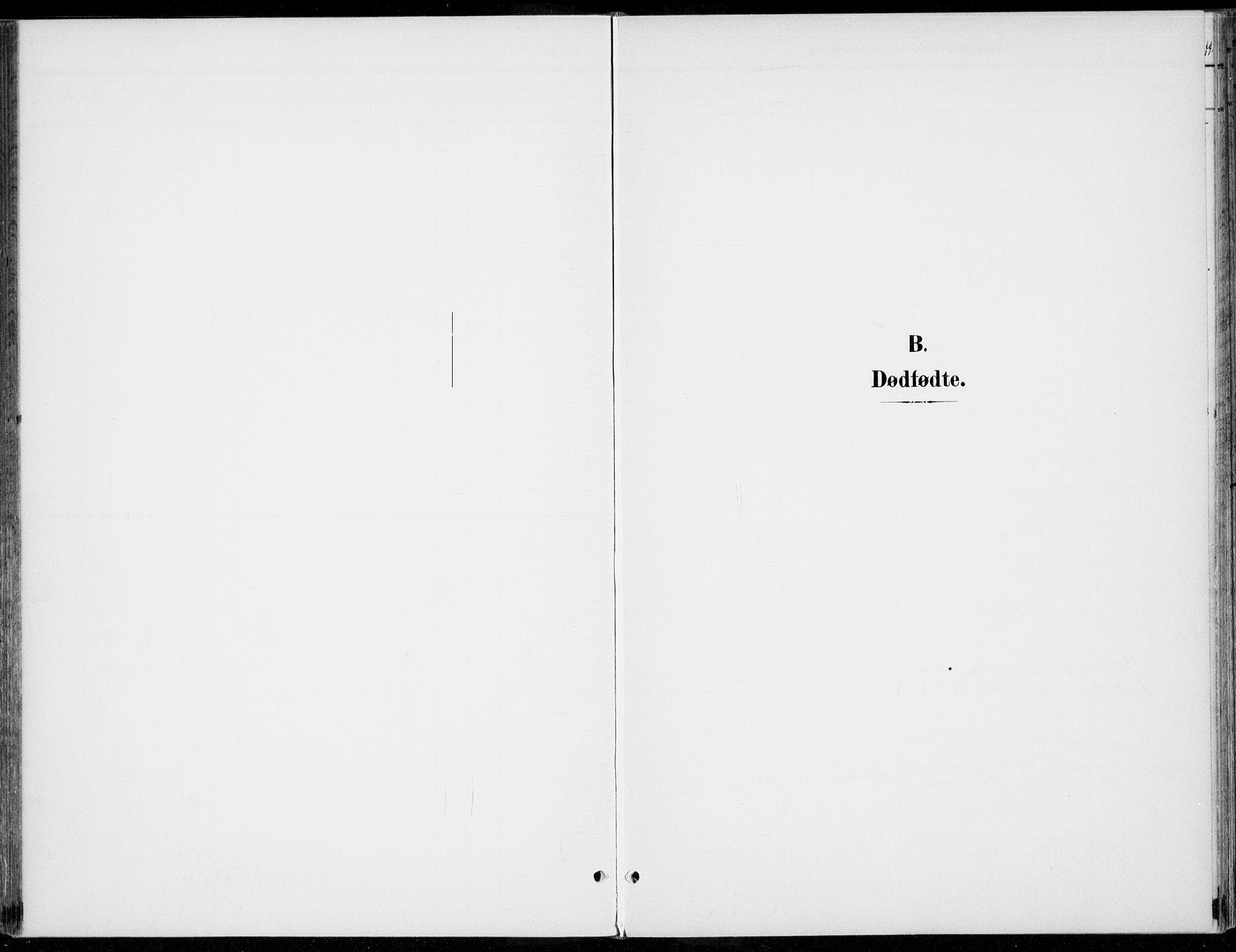 SAH, Rendalen prestekontor, H/Ha/Haa/L0011: Ministerialbok nr. 11, 1901-1925