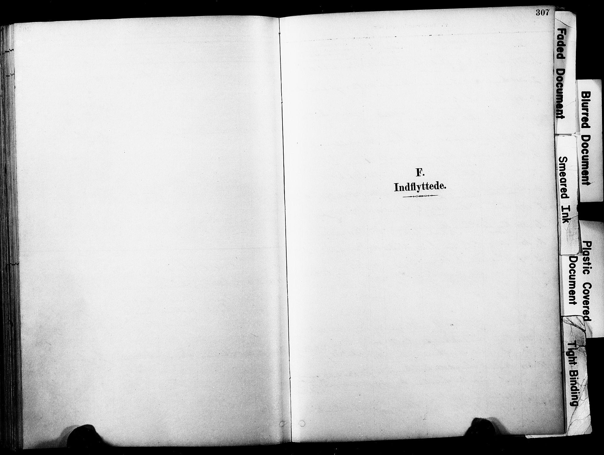 SAKO, Horten kirkebøker, F/Fa/L0004: Ministerialbok nr. 4, 1888-1895, s. 307