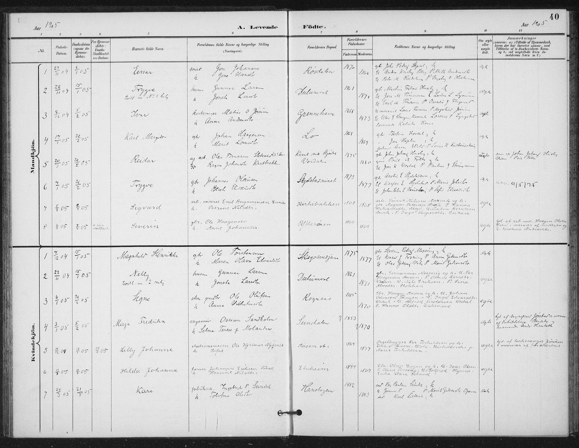 SAT, Ministerialprotokoller, klokkerbøker og fødselsregistre - Nord-Trøndelag, 714/L0131: Ministerialbok nr. 714A02, 1896-1918, s. 40