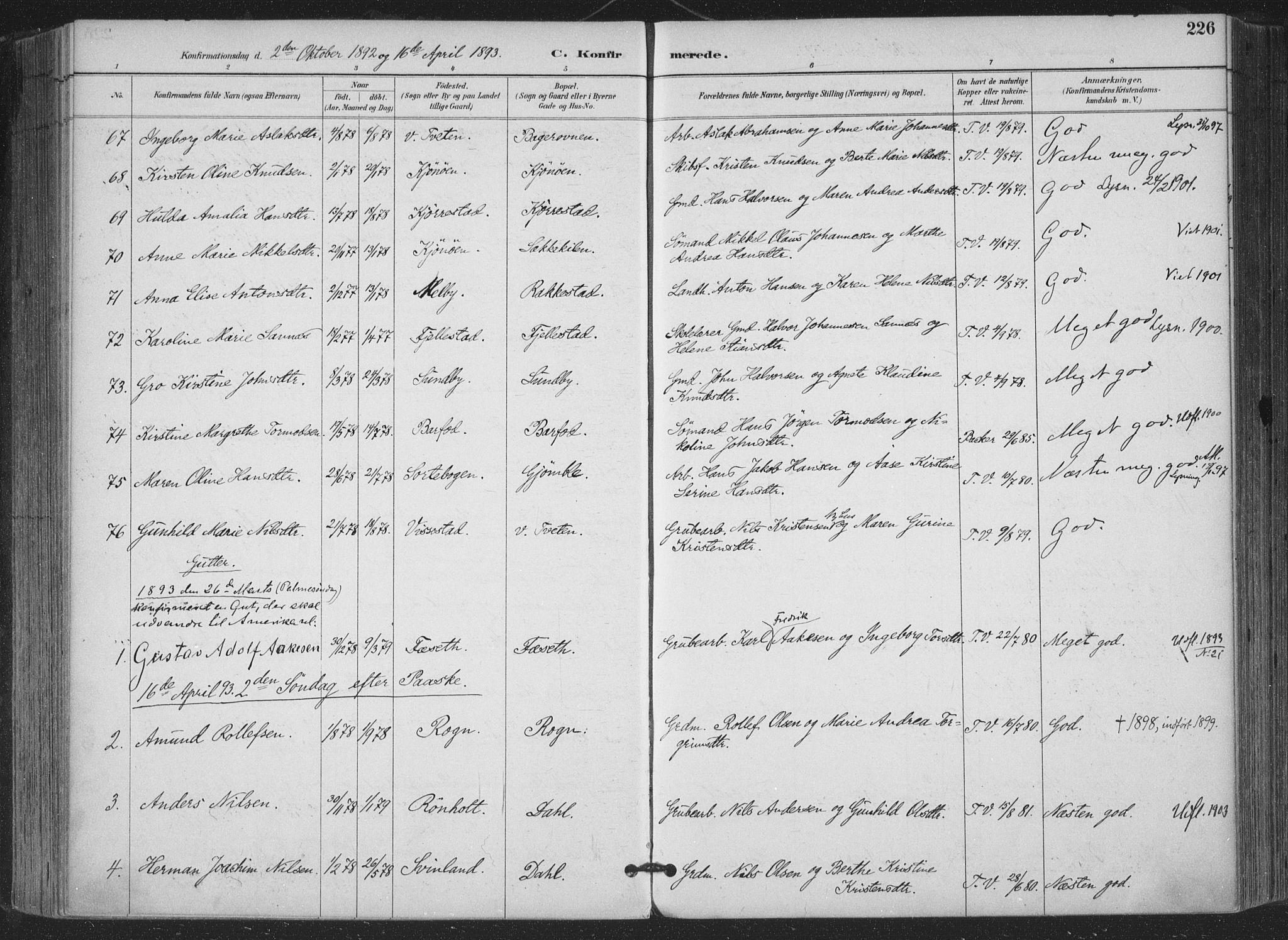 SAKO, Bamble kirkebøker, F/Fa/L0008: Ministerialbok nr. I 8, 1888-1900, s. 226