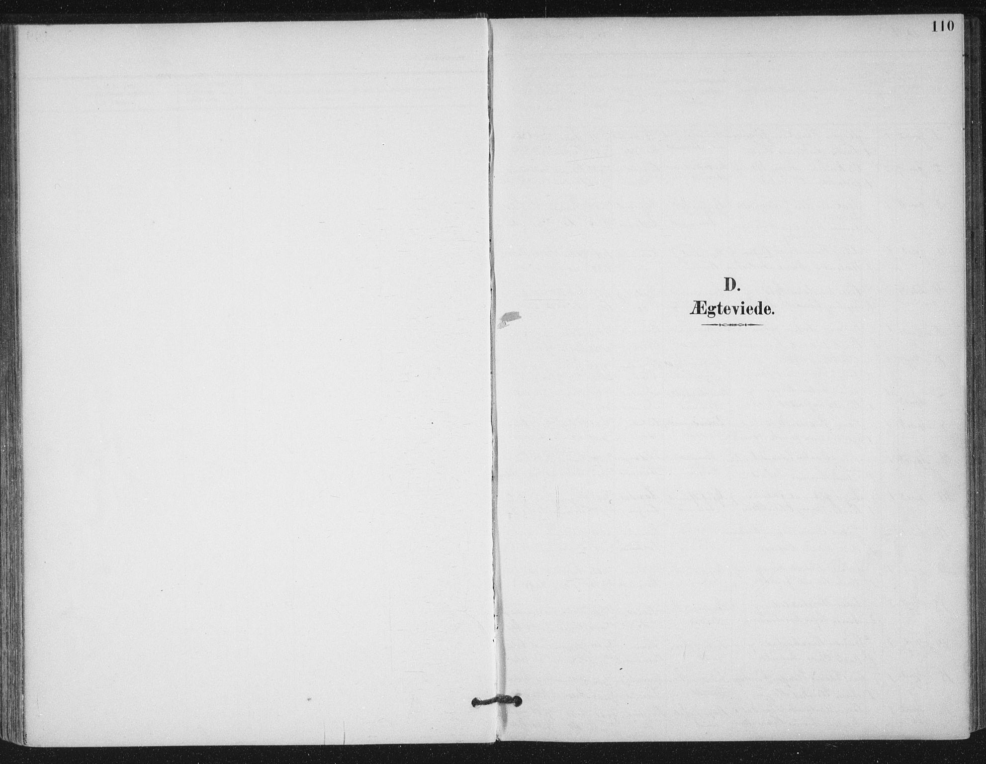 SAT, Ministerialprotokoller, klokkerbøker og fødselsregistre - Møre og Romsdal, 529/L0457: Ministerialbok nr. 529A07, 1894-1903, s. 110