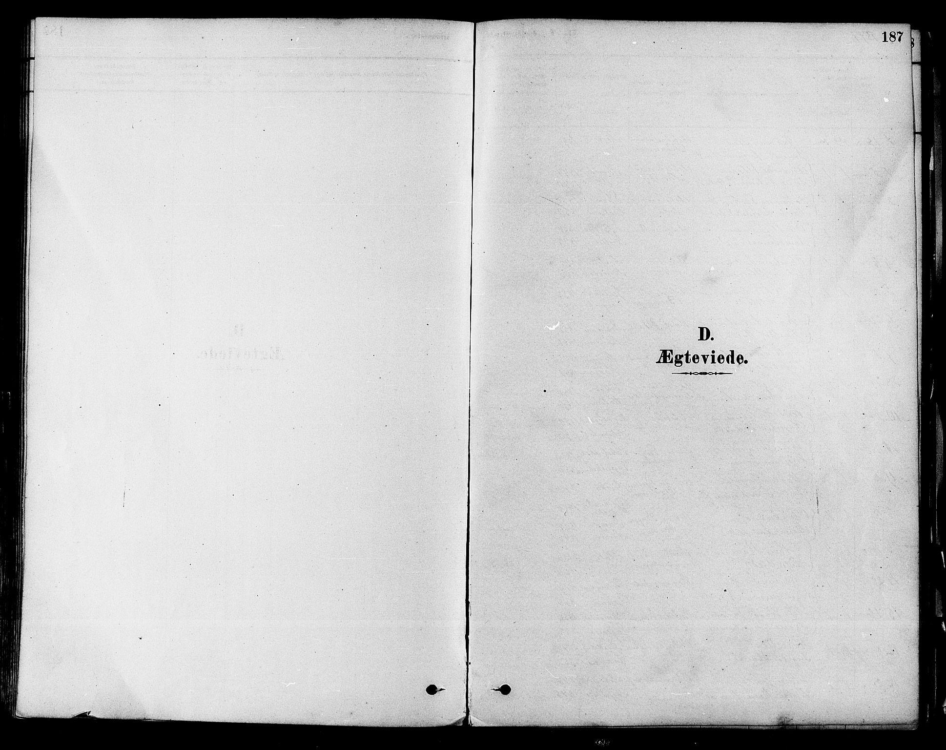 SAKO, Modum kirkebøker, F/Fa/L0011: Ministerialbok nr. 11, 1877-1889, s. 187