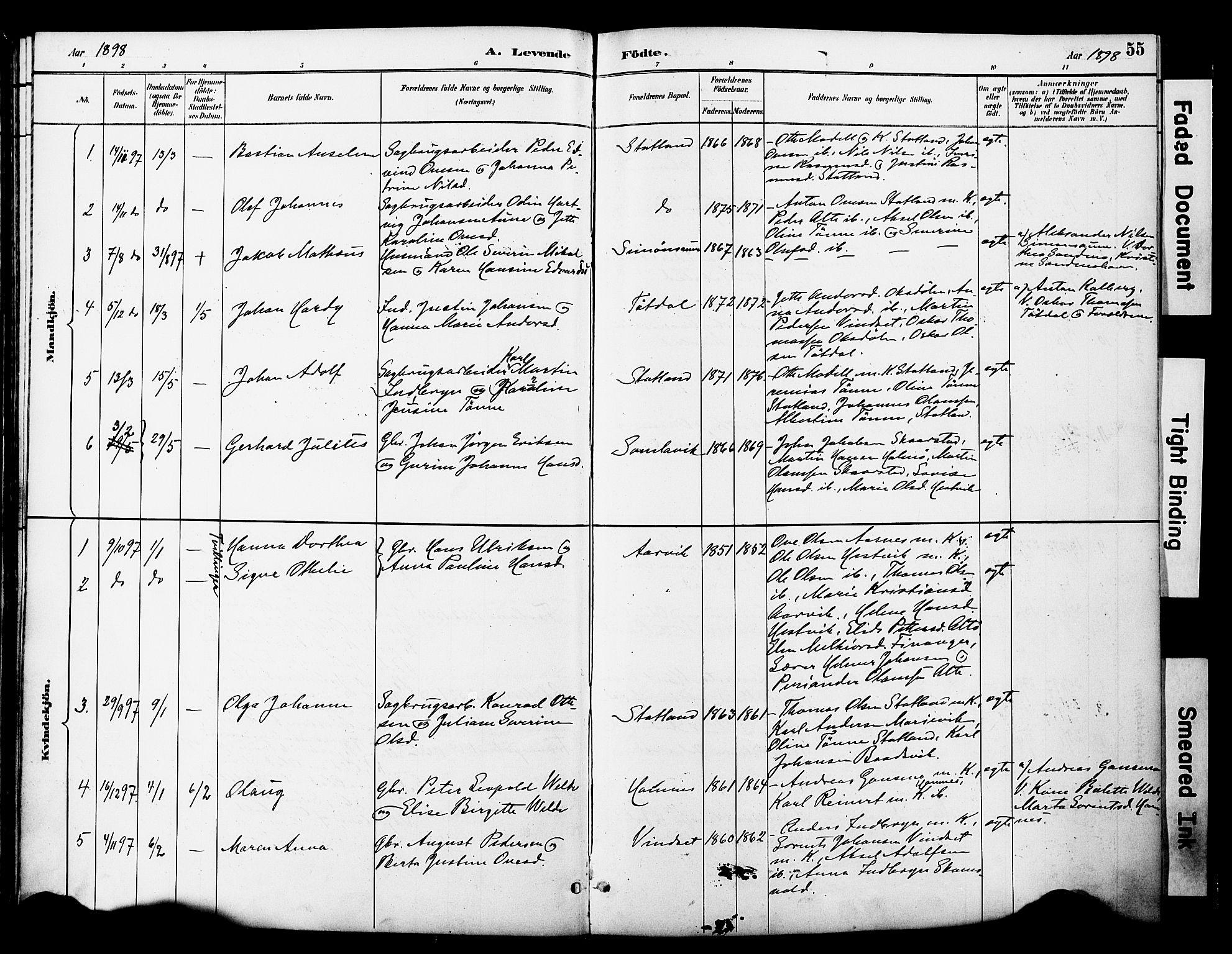 SAT, Ministerialprotokoller, klokkerbøker og fødselsregistre - Nord-Trøndelag, 774/L0628: Ministerialbok nr. 774A02, 1887-1903, s. 55