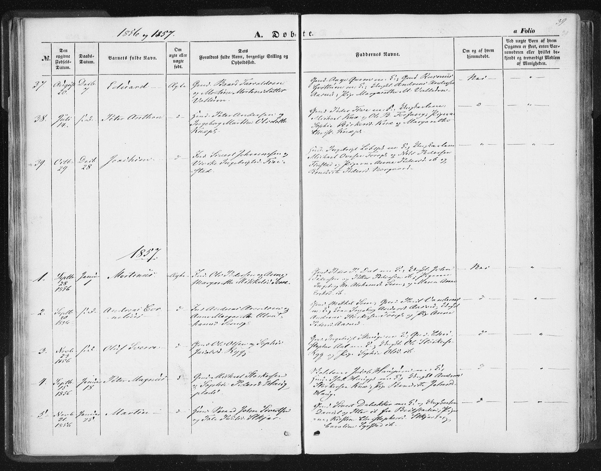 SAT, Ministerialprotokoller, klokkerbøker og fødselsregistre - Nord-Trøndelag, 746/L0446: Ministerialbok nr. 746A05, 1846-1859, s. 39