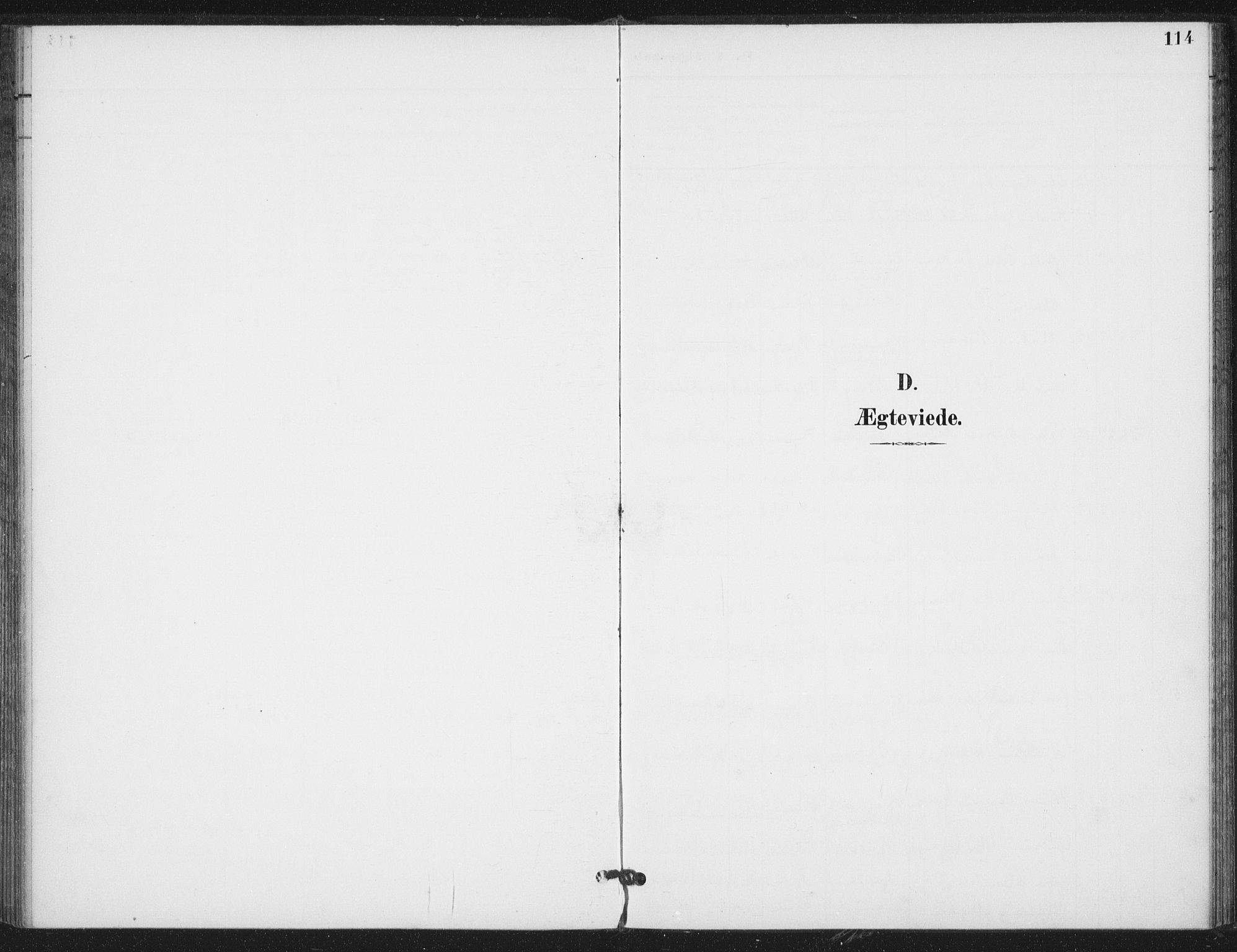 SAT, Ministerialprotokoller, klokkerbøker og fødselsregistre - Nord-Trøndelag, 714/L0131: Ministerialbok nr. 714A02, 1896-1918, s. 114