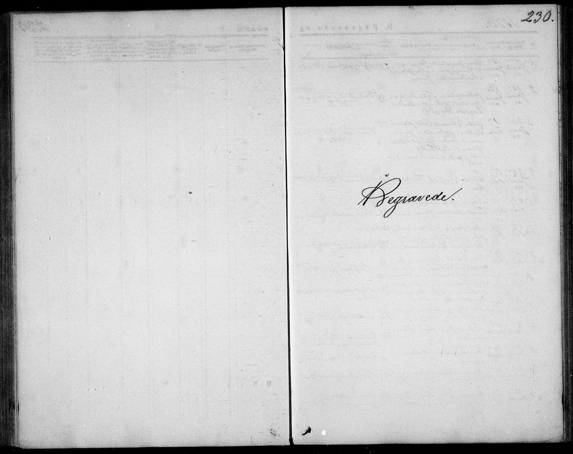 SAO, Garnisonsmenigheten Kirkebøker, F/Fa/L0011: Ministerialbok nr. 11, 1870-1880, s. 230